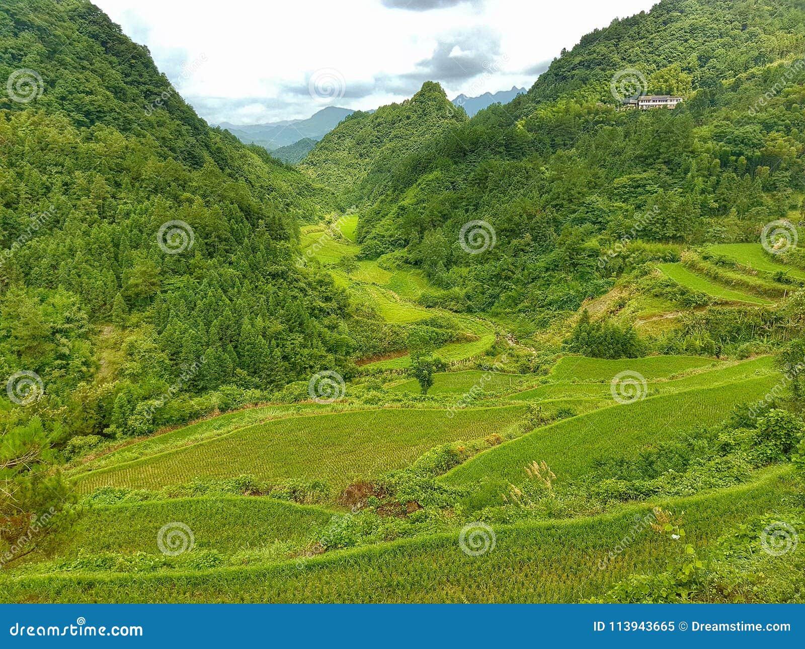 Paisagem & natureza de China