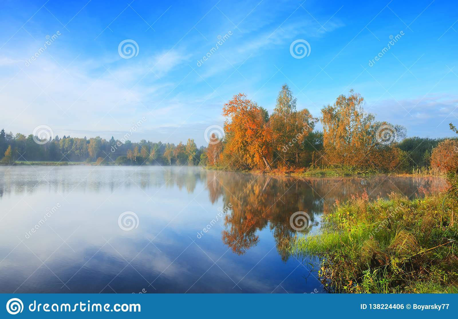 Paisagem nevoenta do outono bonito com as árvores que crescem no banco da lagoa pequena