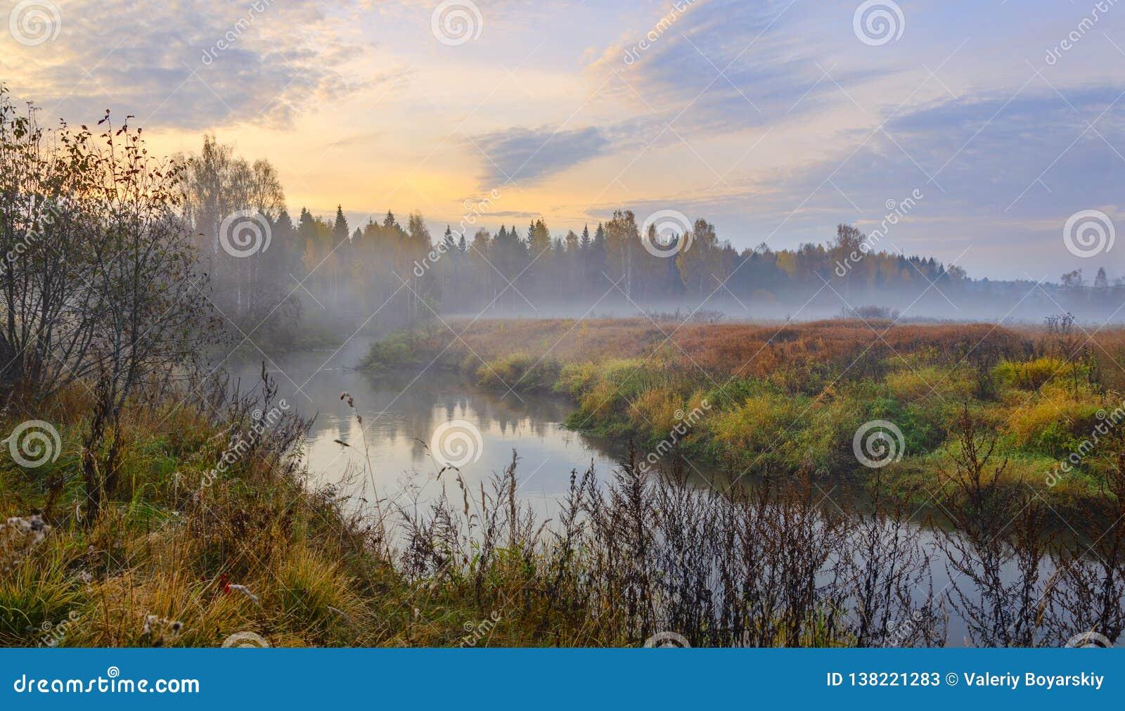 Paisagem nevoenta do outono com o rio pequeno da floresta
