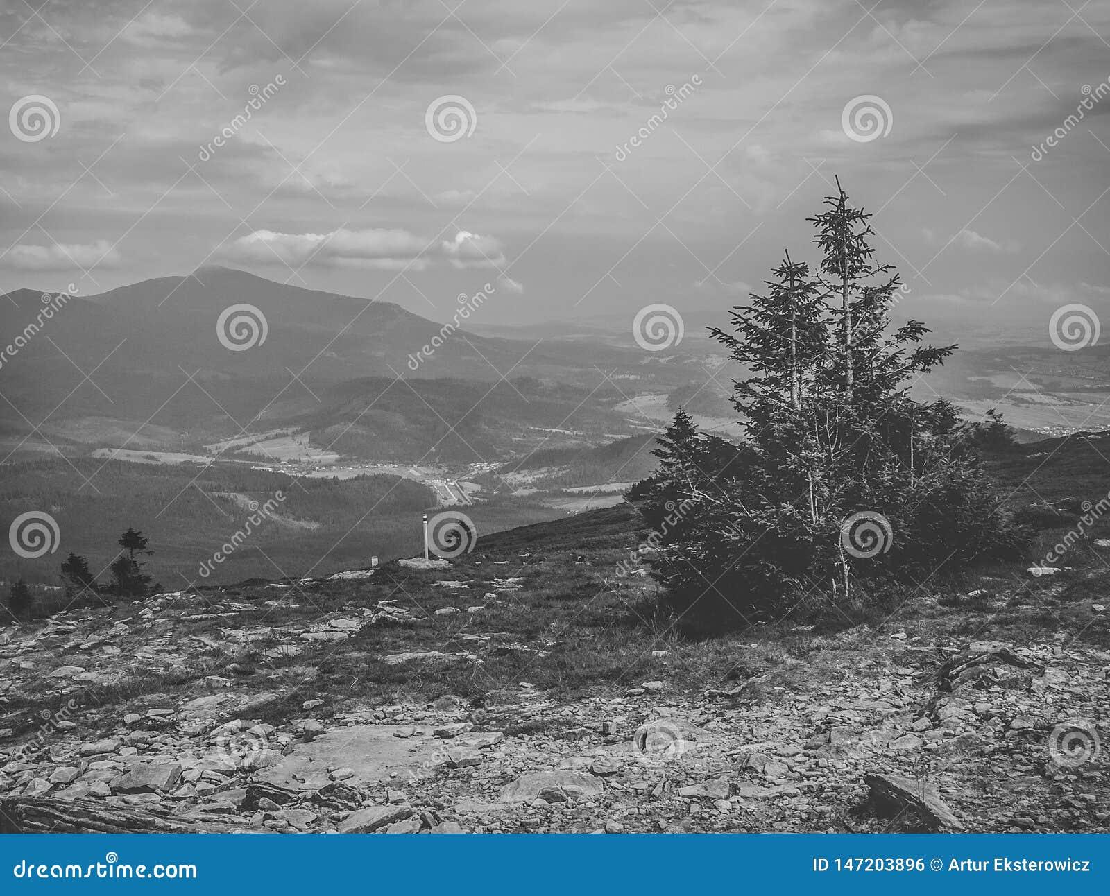 Paisagem preto e branco da parte superior da montanha de Pilsko no Polônia, uma vista da montanha de Babia Góra