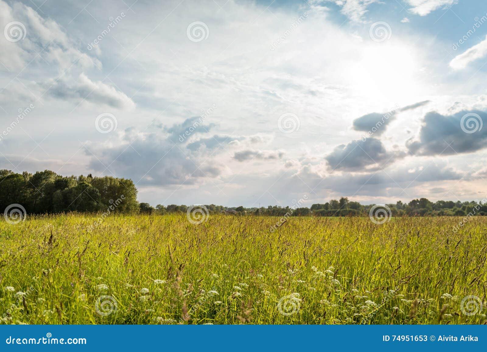 Paisagem rural letão