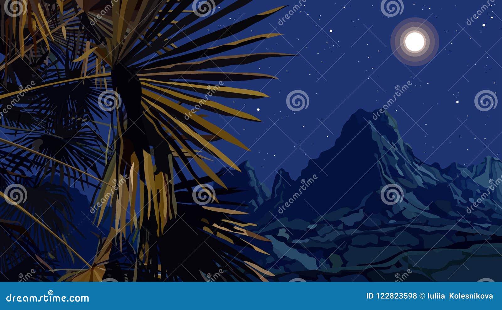 Paisagem tirada da noite das folhas de palmeira em um fundo das montanhas