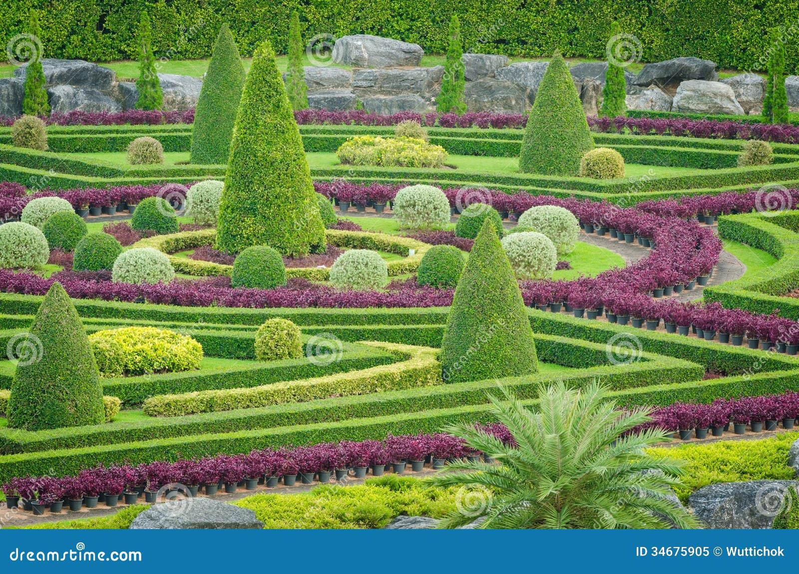plantas jardim tropical:Tropical Ornamental Trees