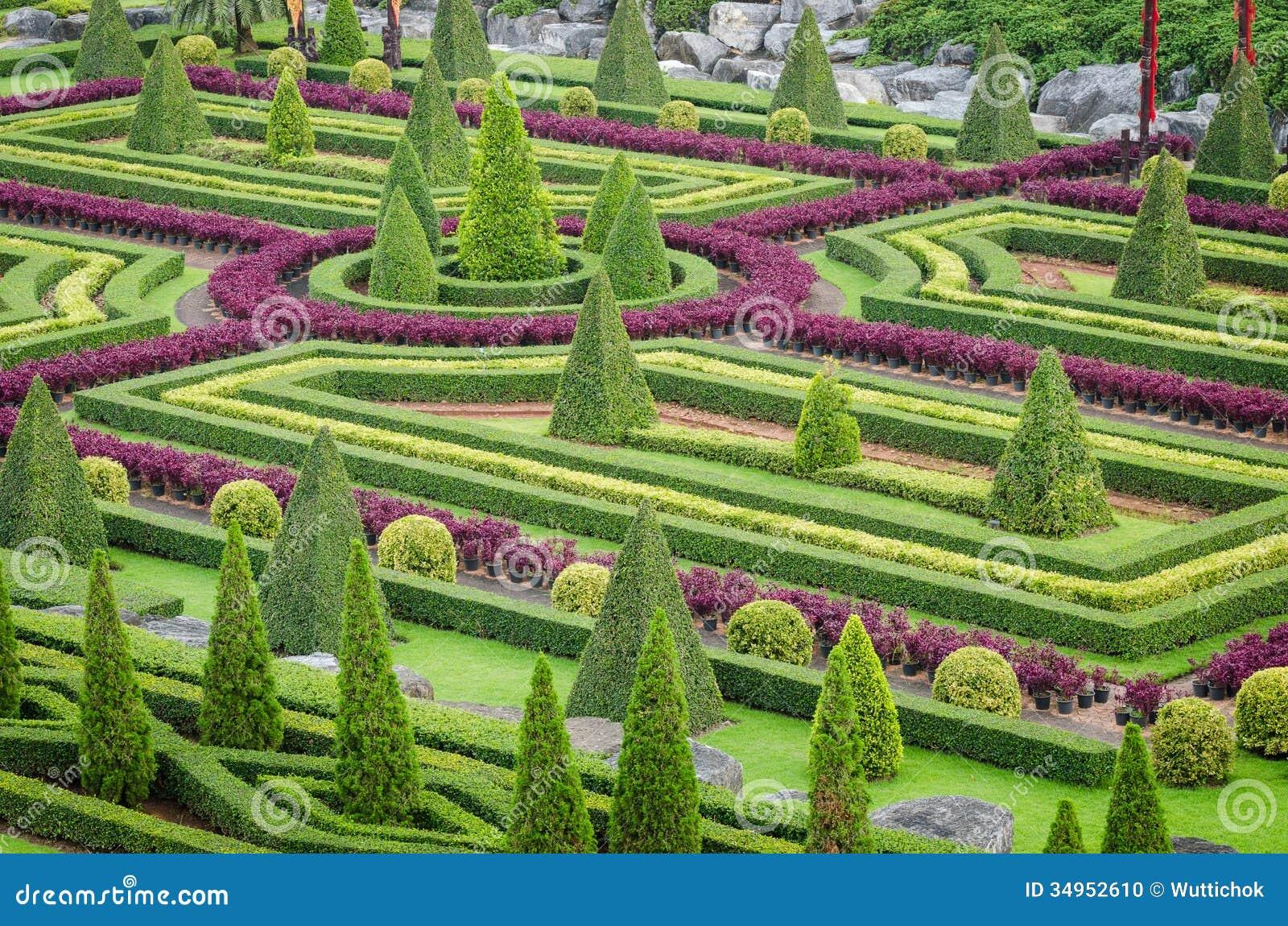 plantas jardim tropical:Paisagem tropical da árvore bonita decorativa das plantas decorativas