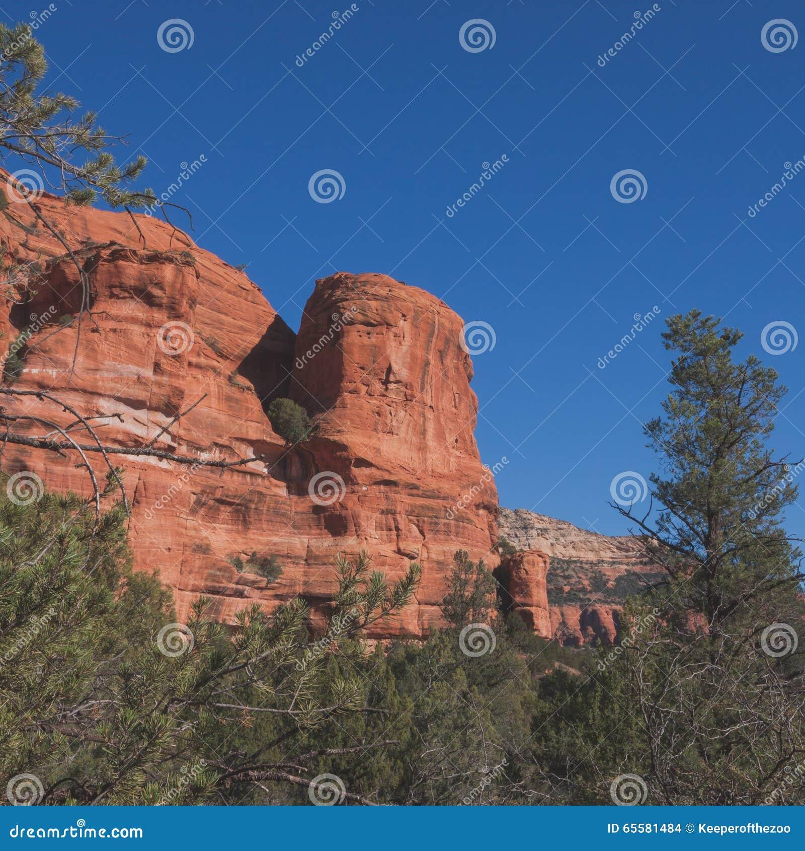 Paisagem vermelha quadrada de Sedona da rocha