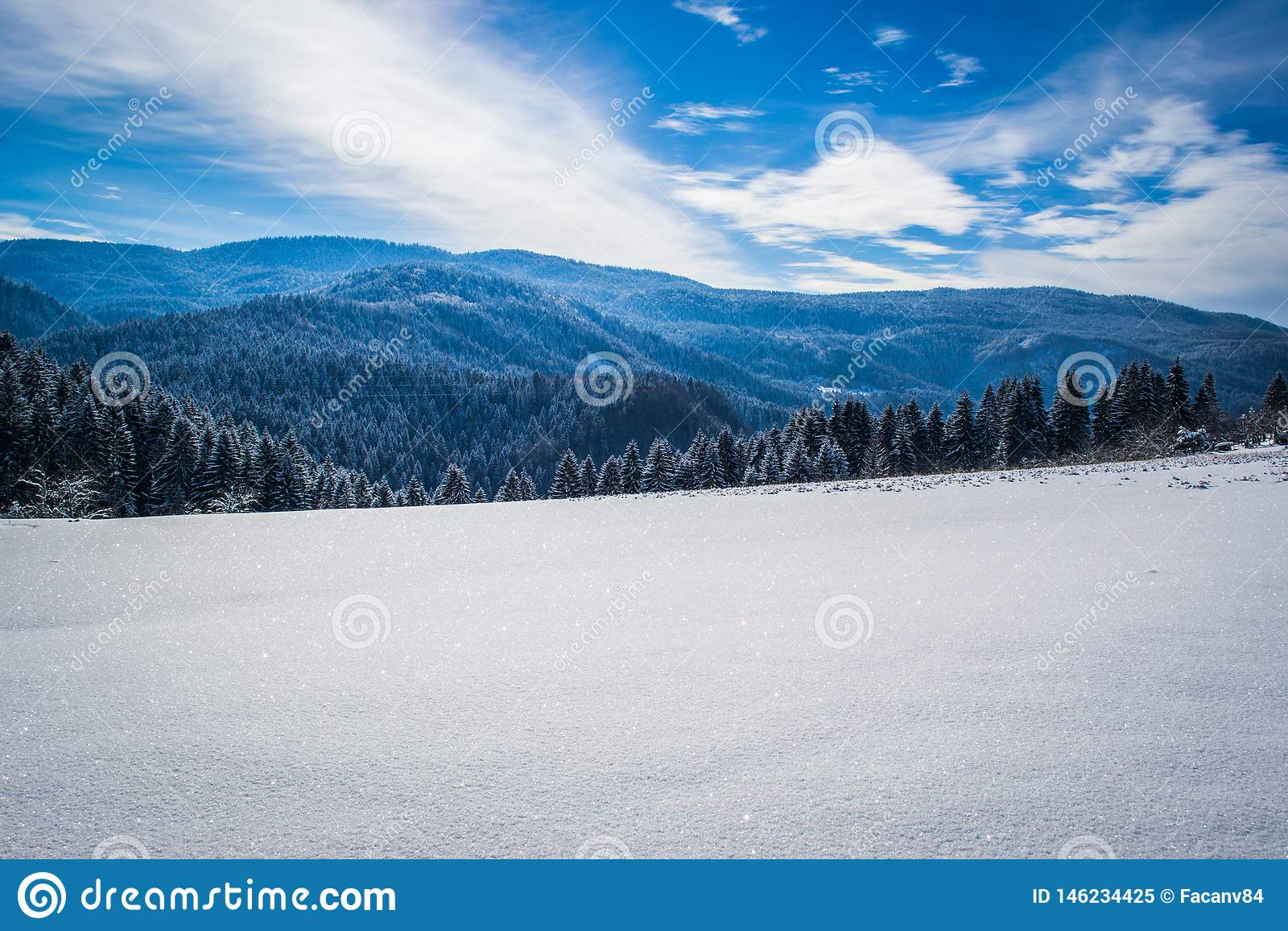Paisagens bonitas do inverno com floresta, ?rvores e sol Um inverno e um dia ensolarado na montanha C?u azul no fundo