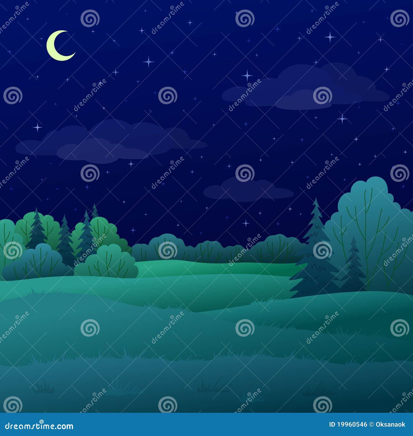 Paisaje, bosque del verano de la noche