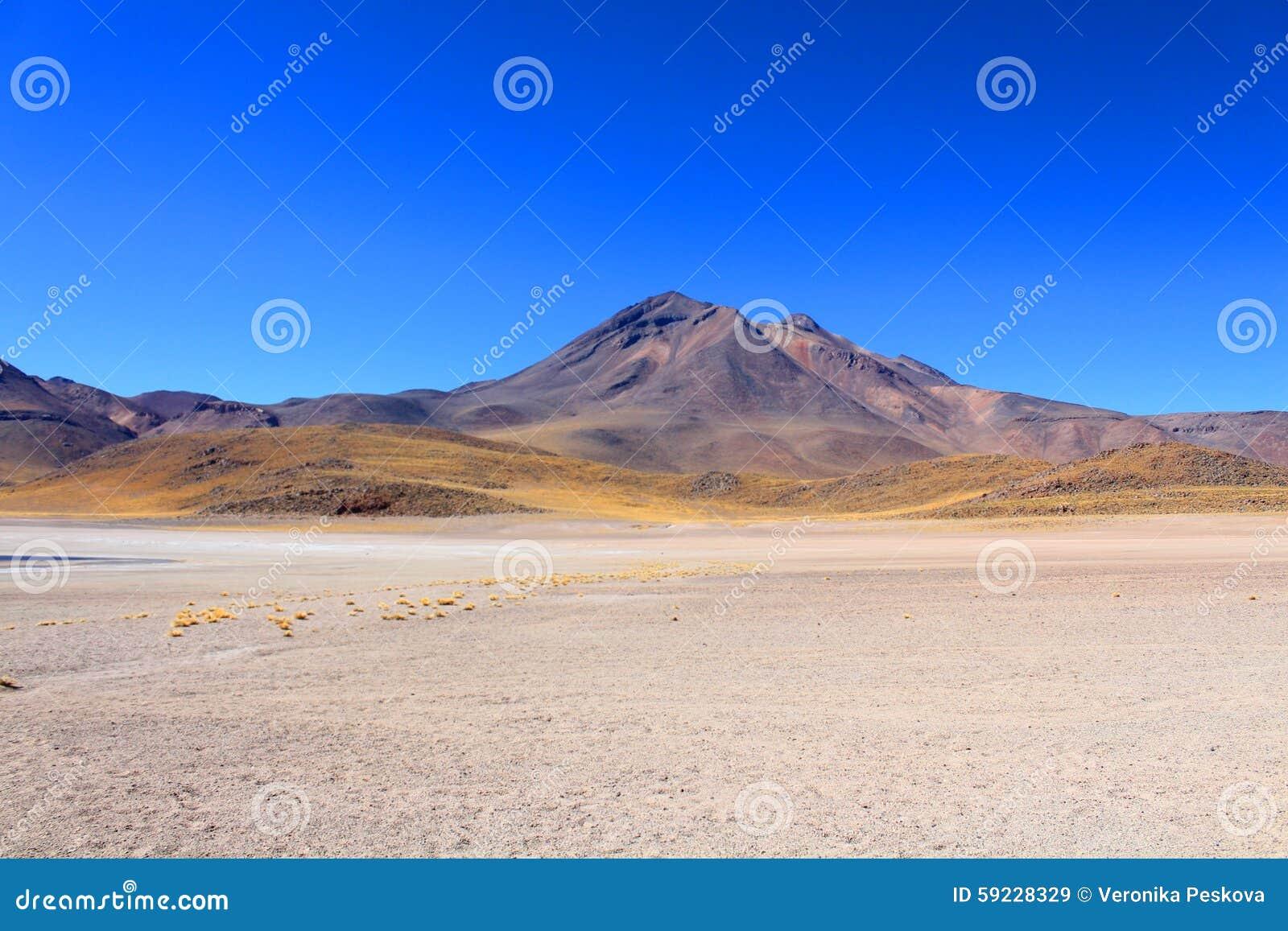Download Paisaje chileno hermoso imagen de archivo. Imagen de plano - 59228329