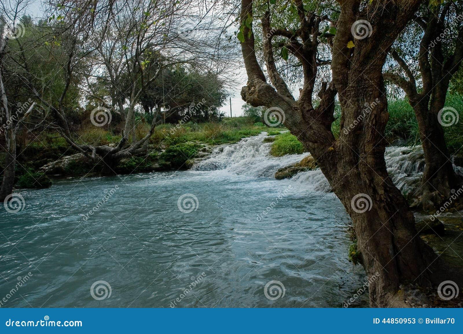 Paisaje con el río y los árboles