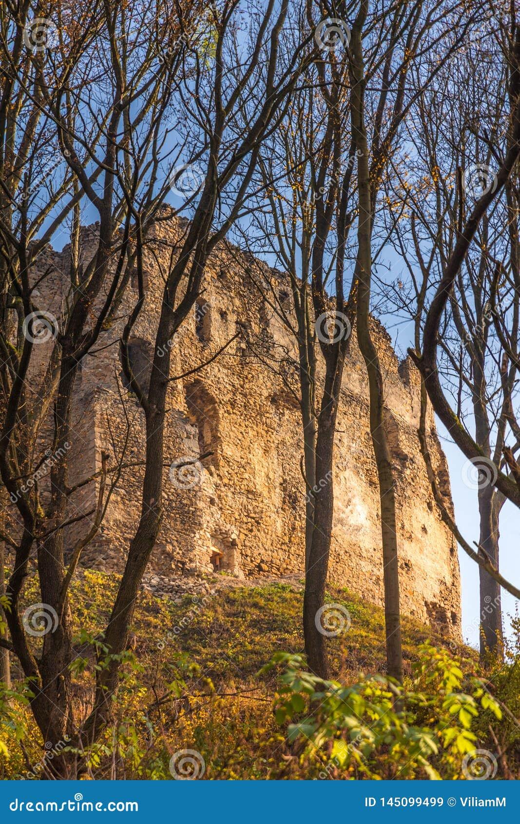 Paisaje con ruina del castillo medieval el hrad de Povazsky