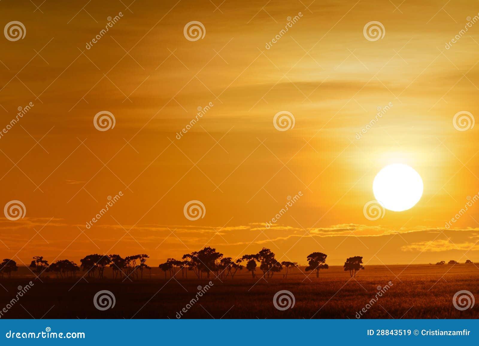 Paisaje con salida del sol en la sabana