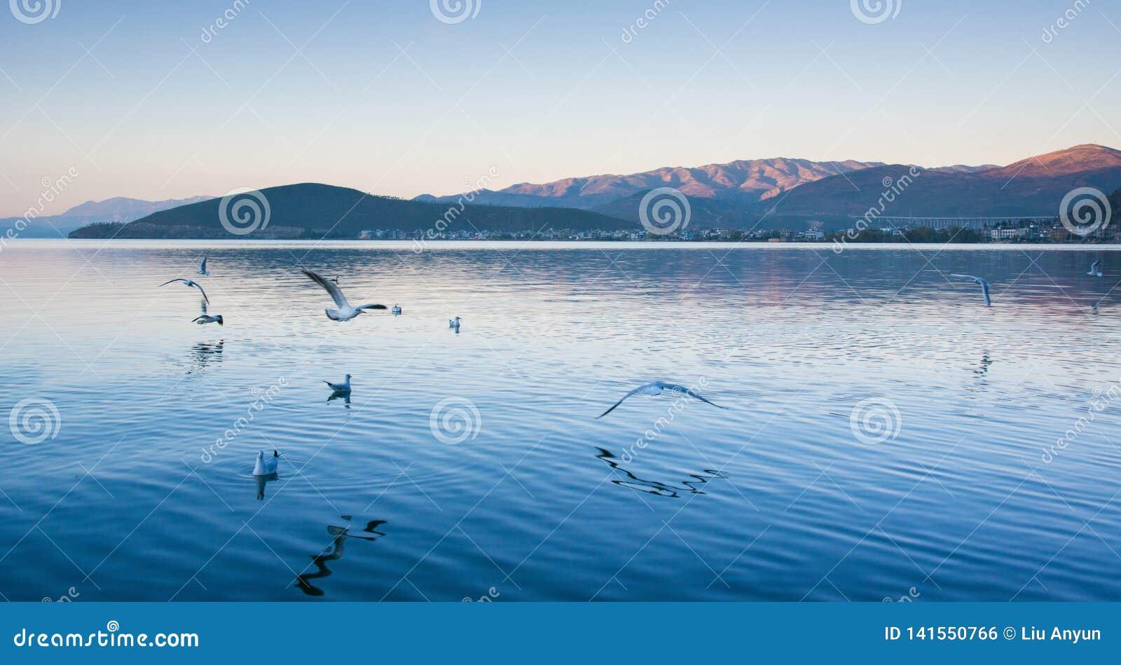 Paisaje costero del lago del erhai