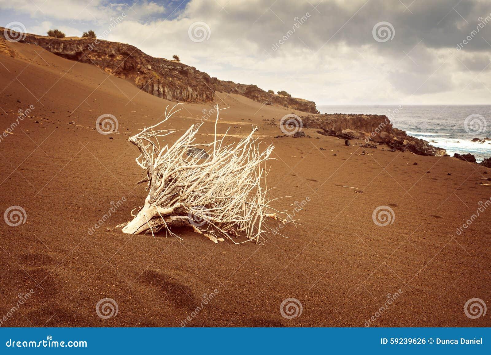 Download Paisaje De Capelinhos, Isla De Faial, Azores Foto de archivo - Imagen de coastline, secado: 59239626