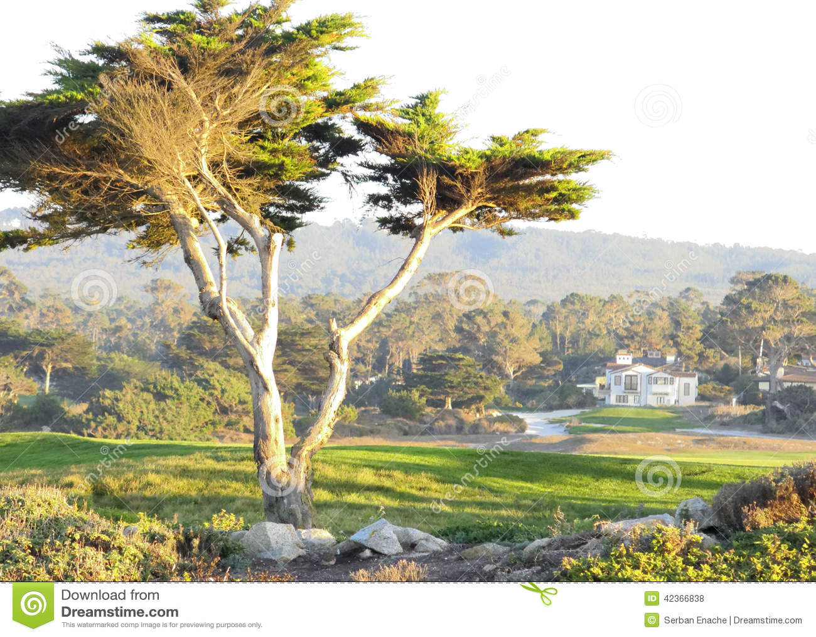 Paisaje de Carmel en California