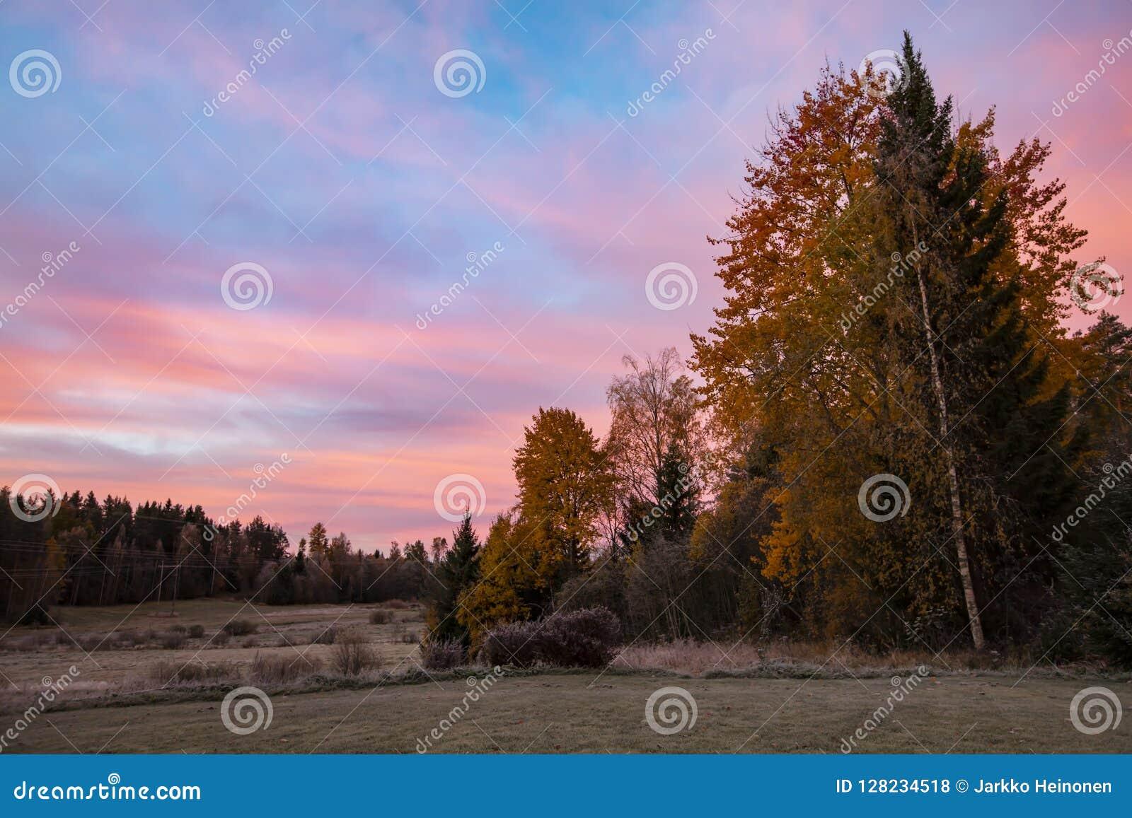 Paisaje de color naranja hermoso de la mañana en Finlandia