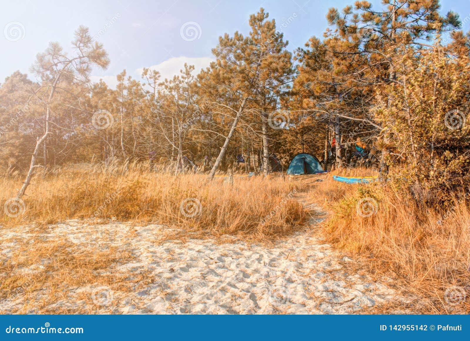 Paisaje de la costa de Autumn Black Sea