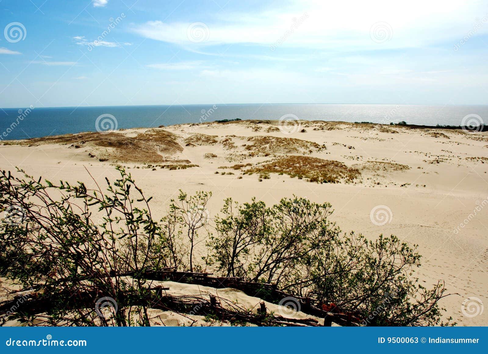 Paisaje de la duna