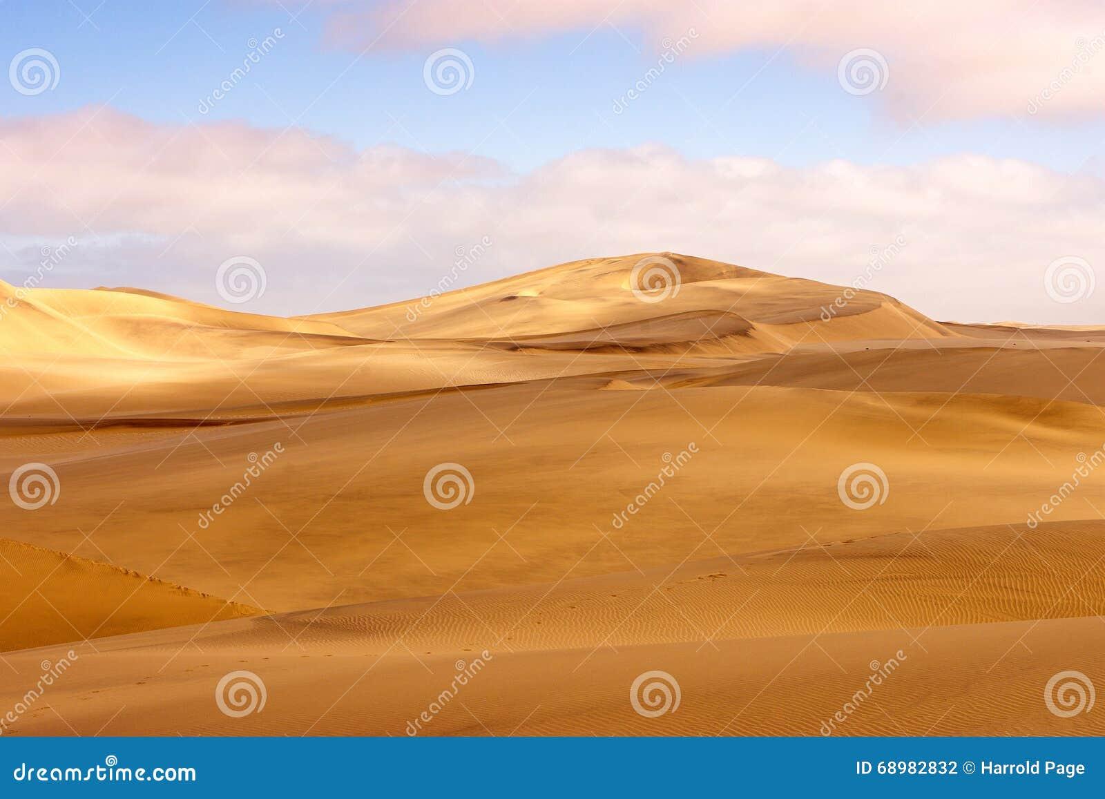 Paisaje de la duna del desierto de Namib