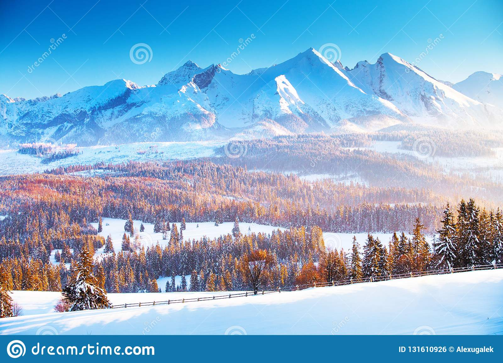 Paisaje de la montaña del invierno  Salida del sol del invierno en las montañas
