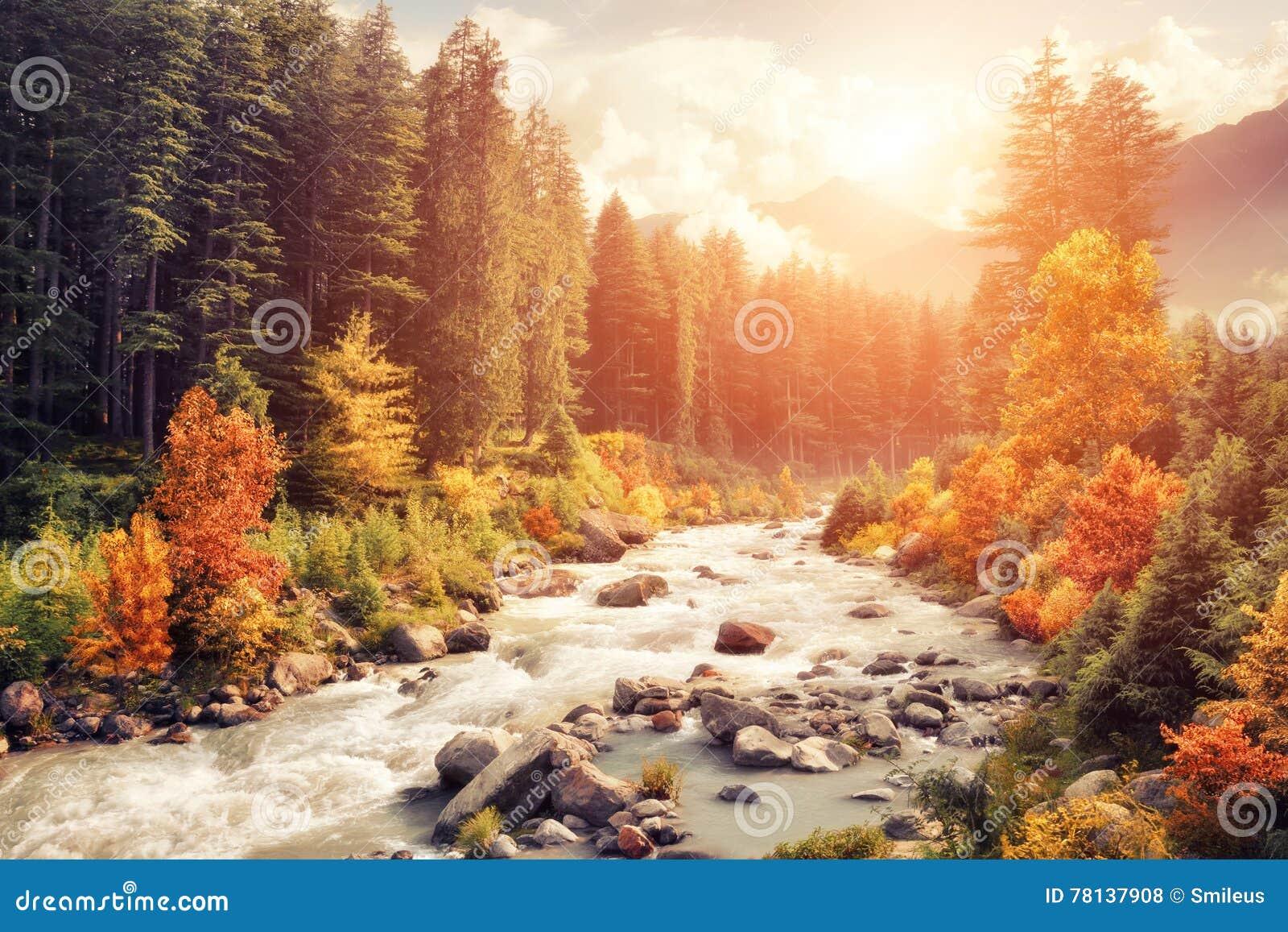 Paisaje de la montaña en otoño