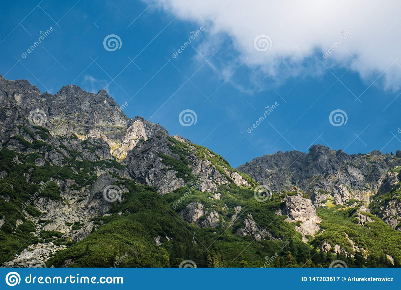 Paisaje de la montaña de las montañas de Tatra