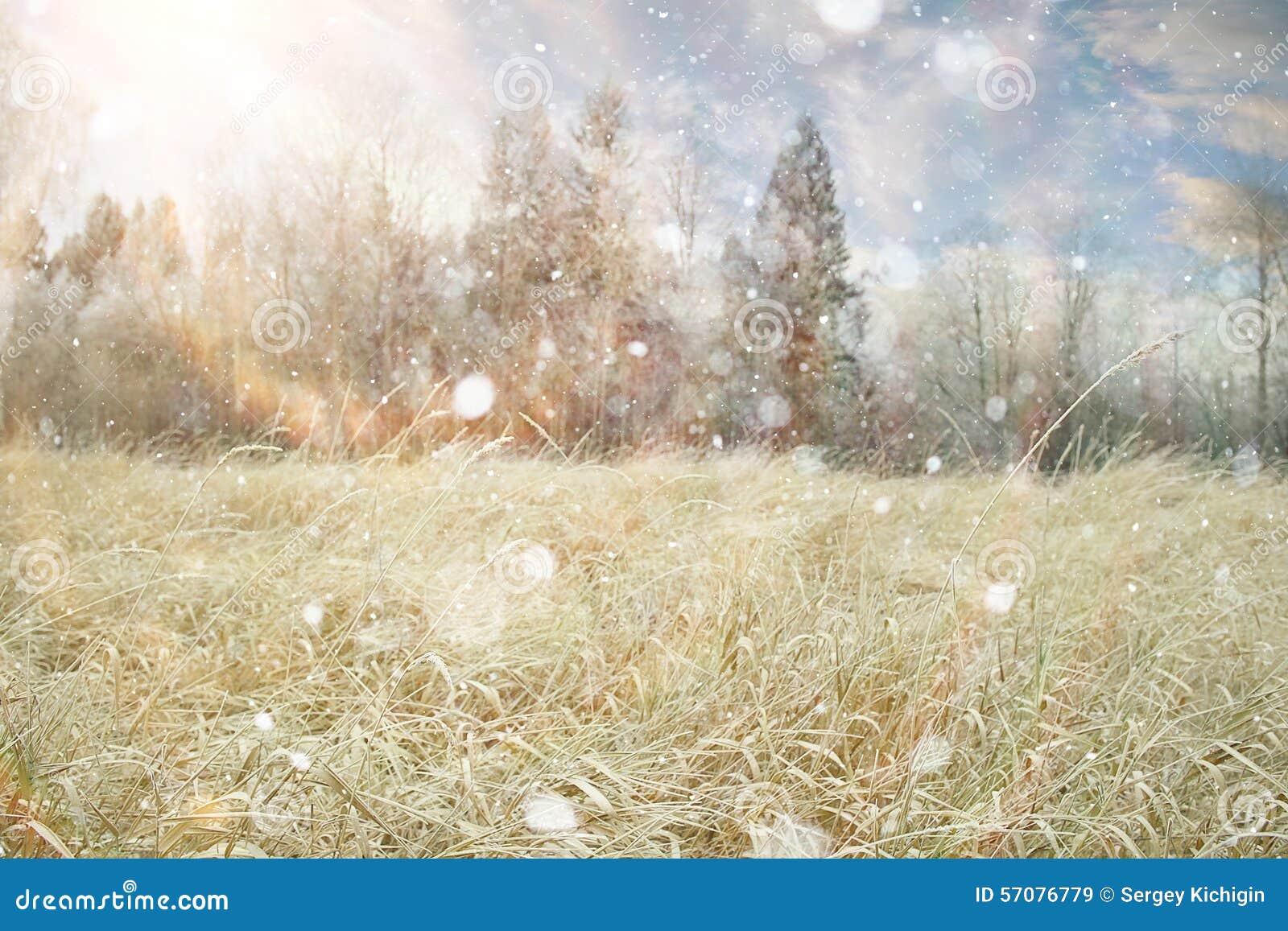 Paisaje de la nieve del invierno