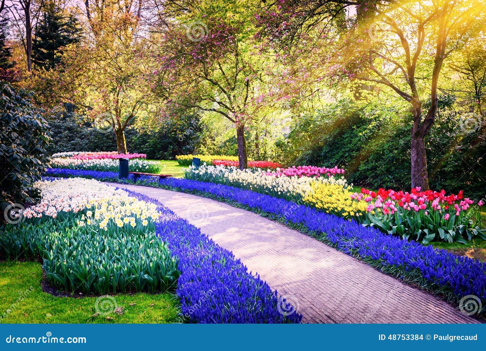 Paisaje de la primavera con las flores coloridas foto de for Jardines en primavera fotos