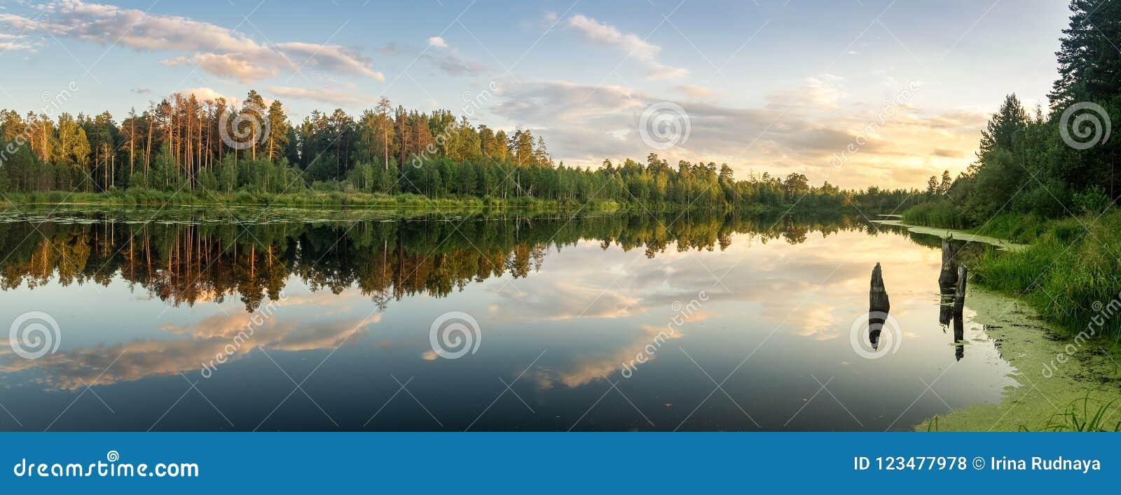 Paisaje de la tarde del verano en el lago Ural con los árboles de pino en la orilla, Rusia