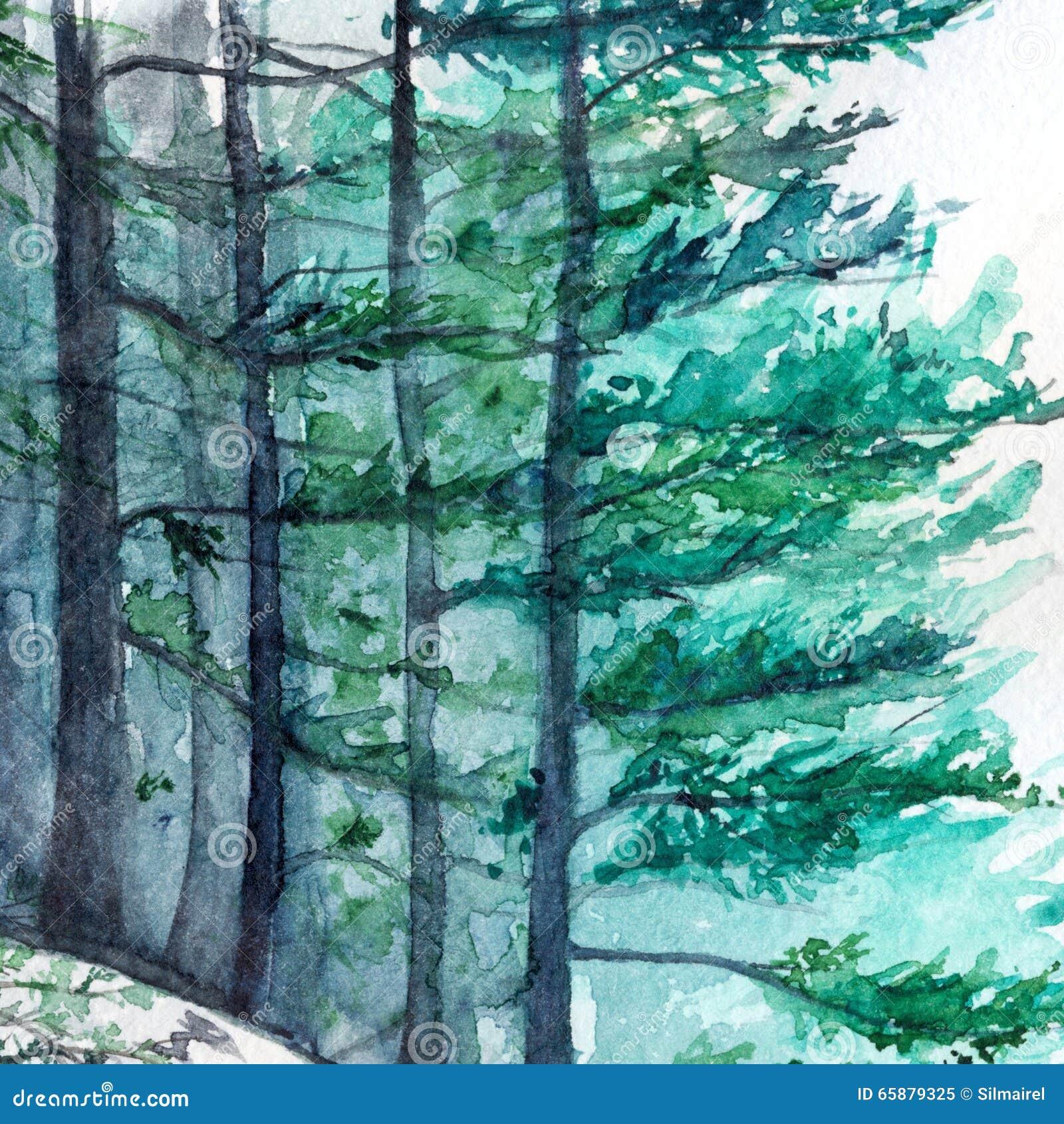 Paisaje de madera del pino del bosque del invierno de la - Maderas del pino ...