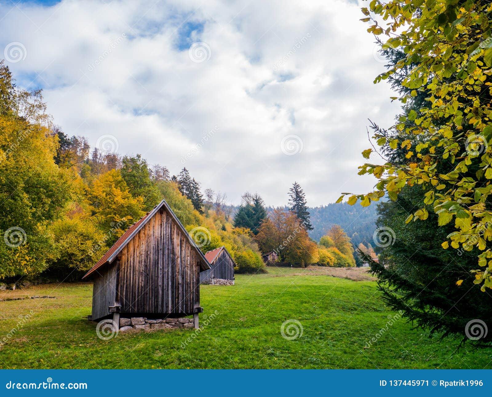 Paisaje del bosque negro con las vertientes en otoño