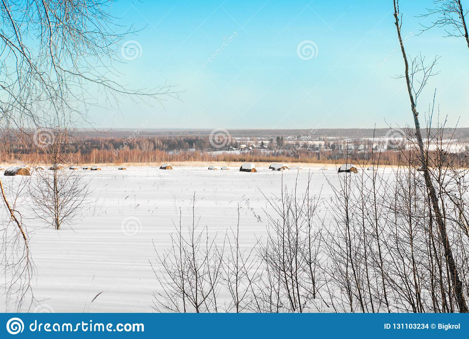 Paisaje del campo del invierno con los pajares nevados en el campo