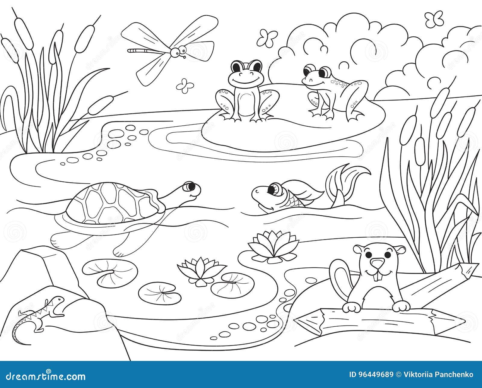 Patos Para Colorear Para Para Con Para Vector Stock Sin: Paisaje Del Humedal Con Los Animales Que Colorean El