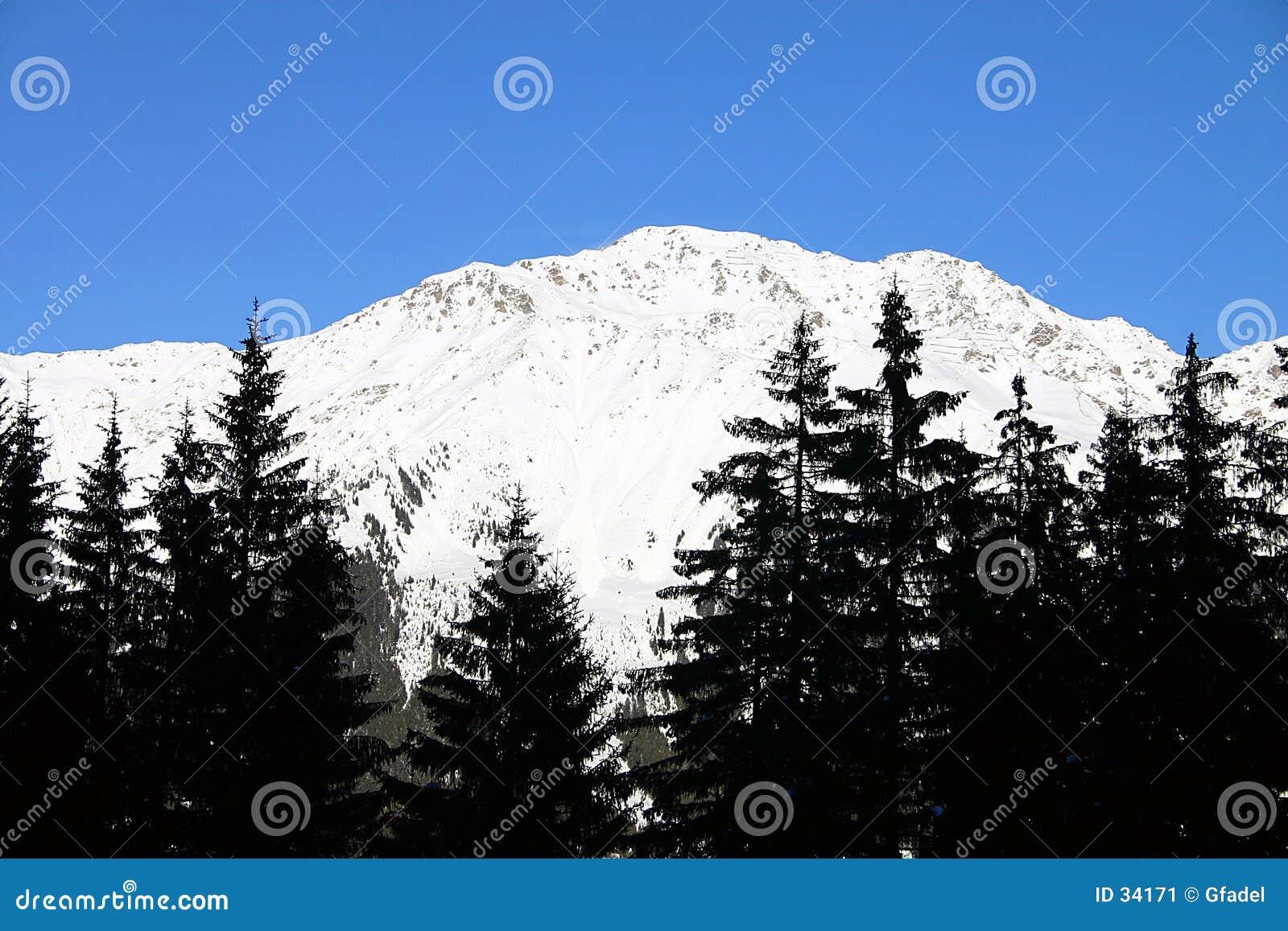 Download Paisaje del invierno imagen de archivo. Imagen de europa - 34171