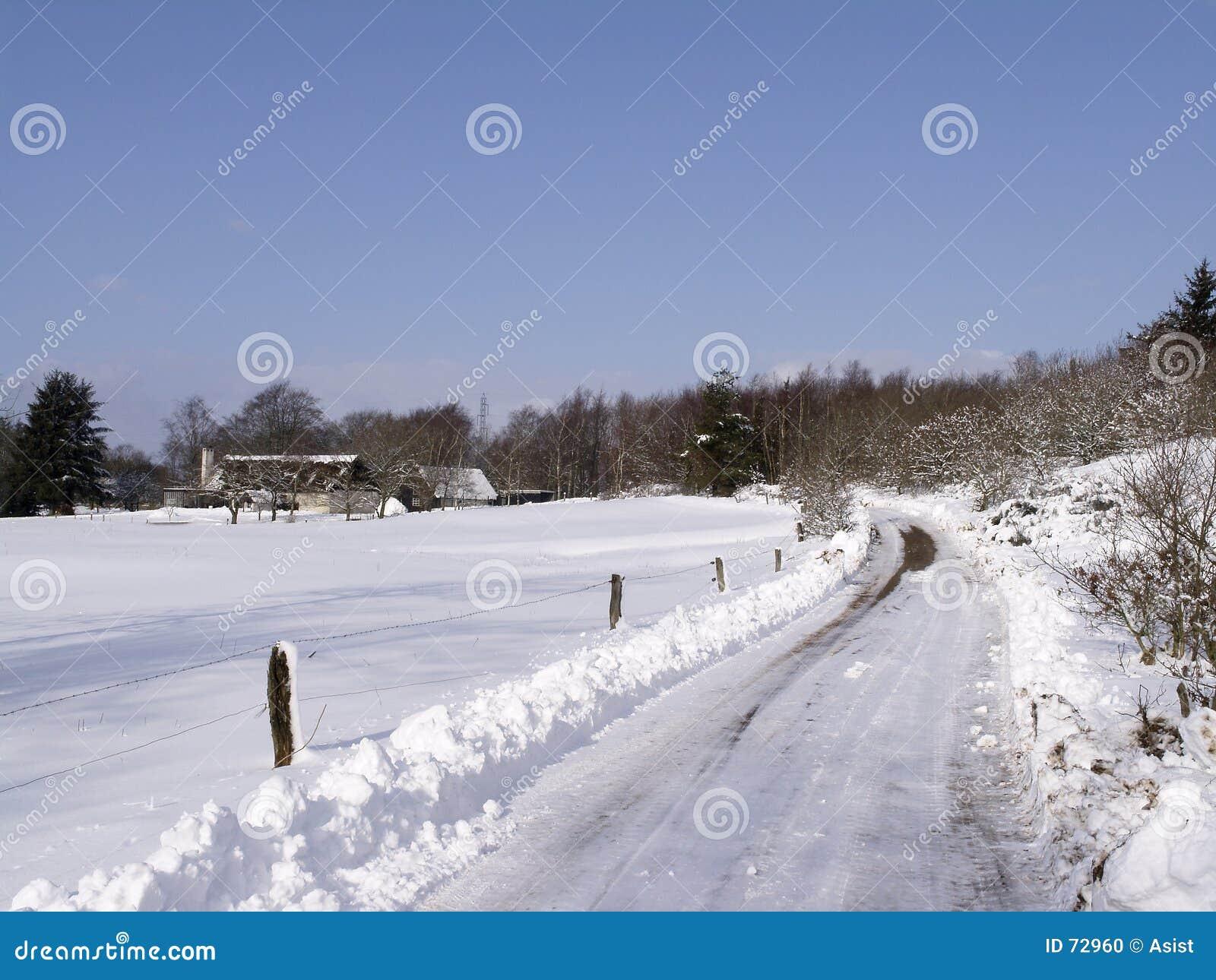 Paisaje del invierno con el camino