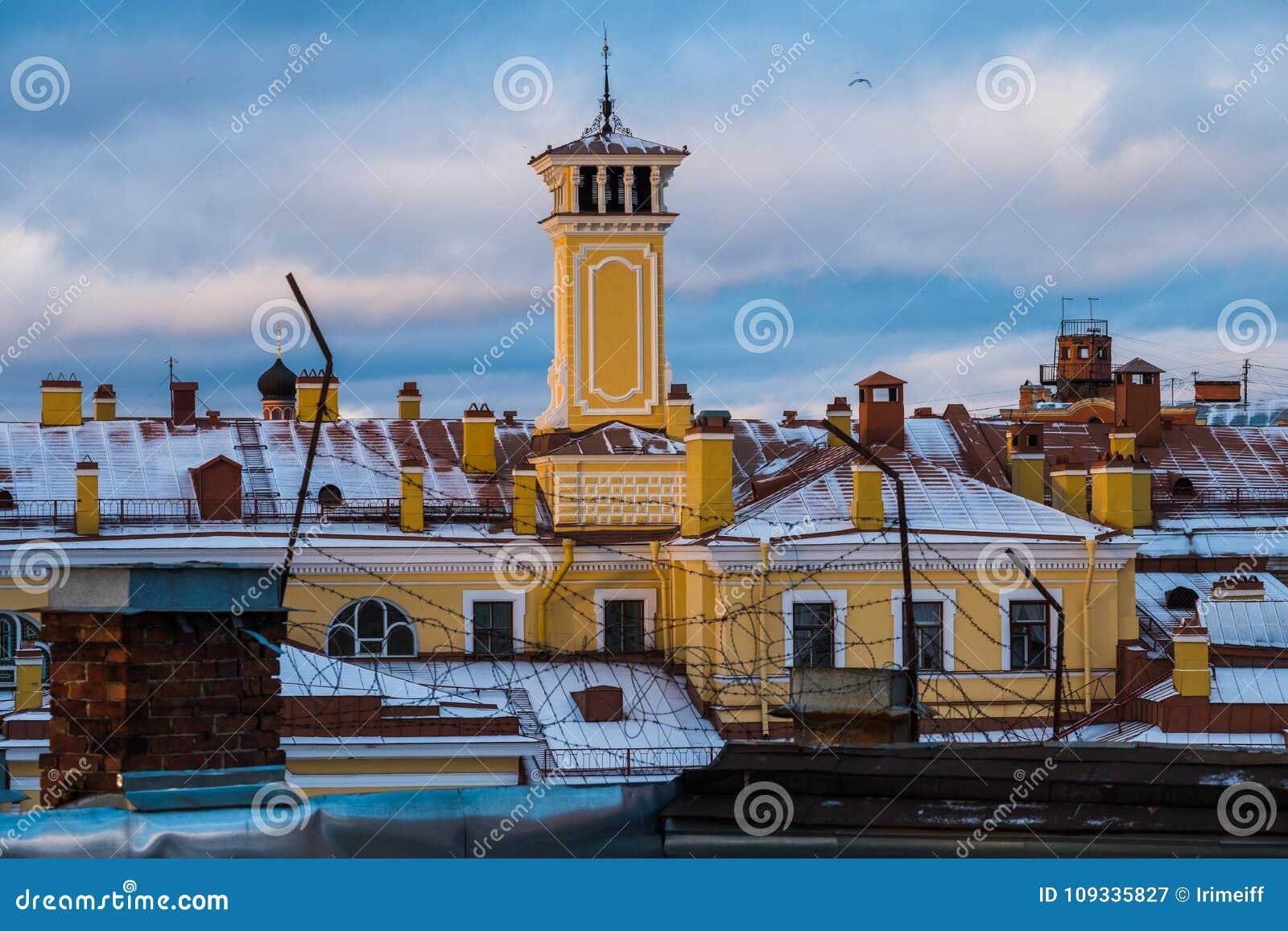 Paisaje del invierno de Sankt-Peterburg