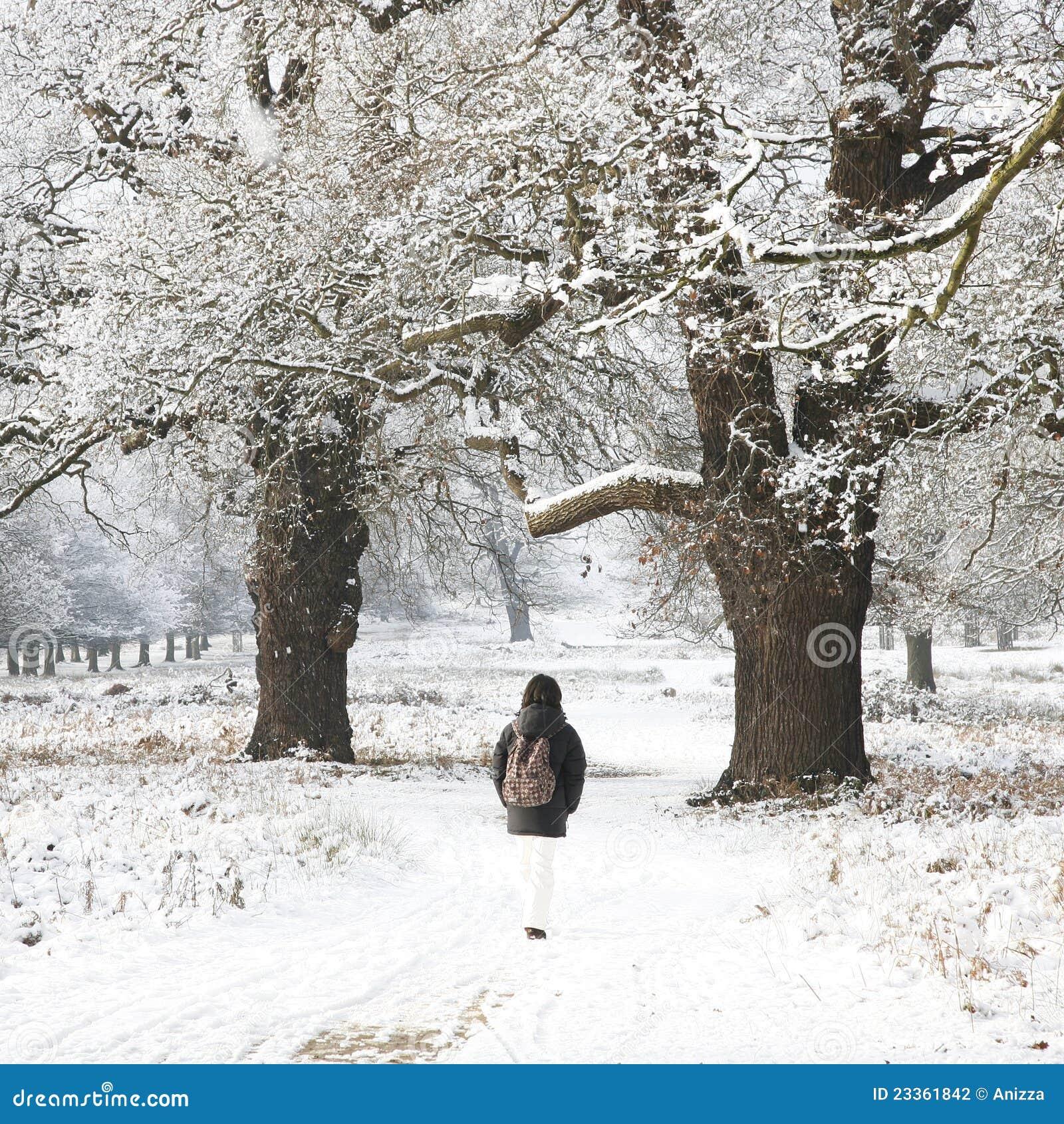 Banco en el parque de invierno Enfoque enfoque