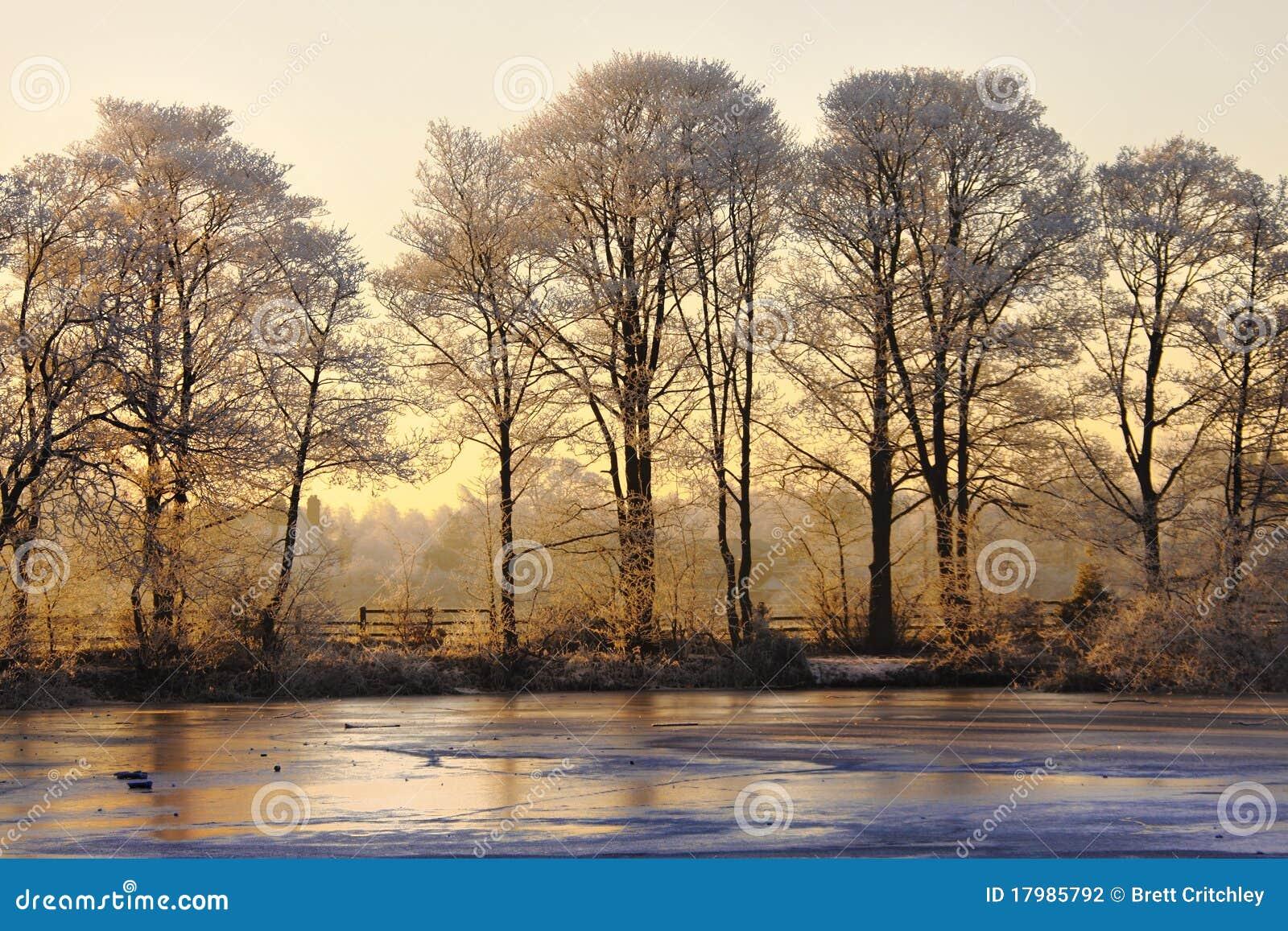 Paisaje del invierno en la puesta del sol