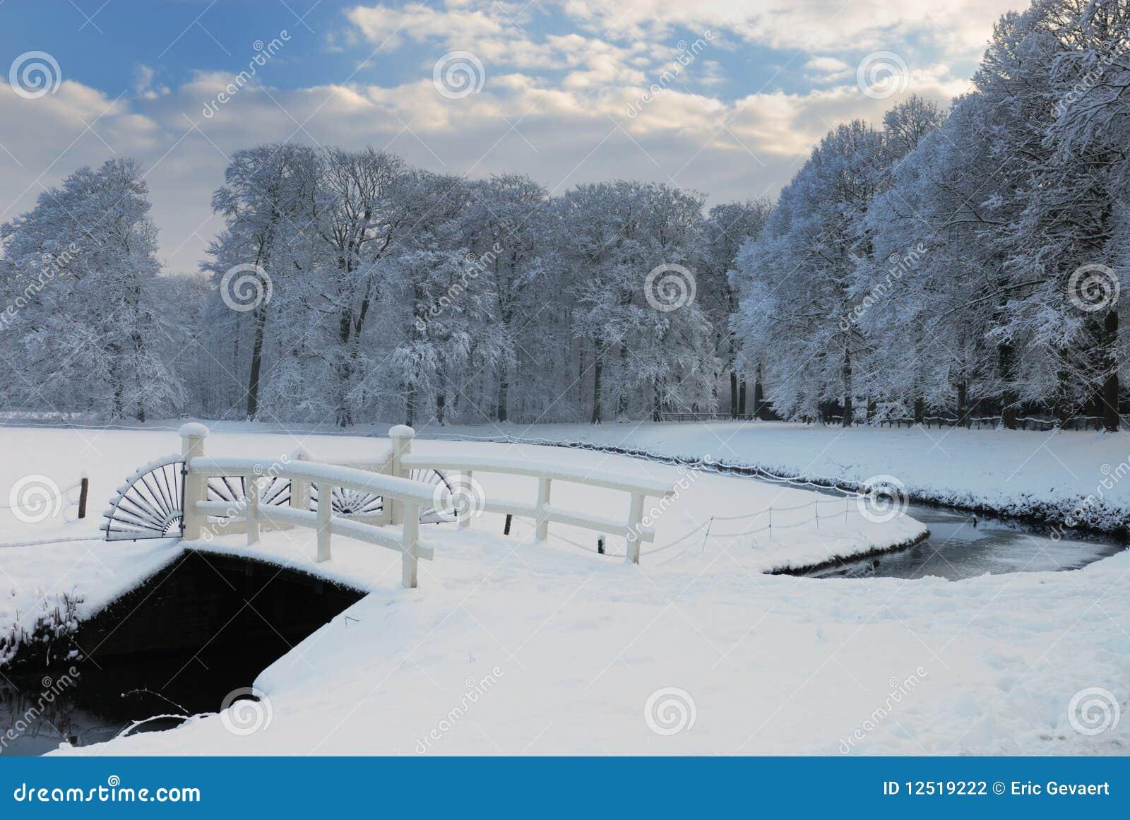 Paisaje del invierno en los Países Bajos