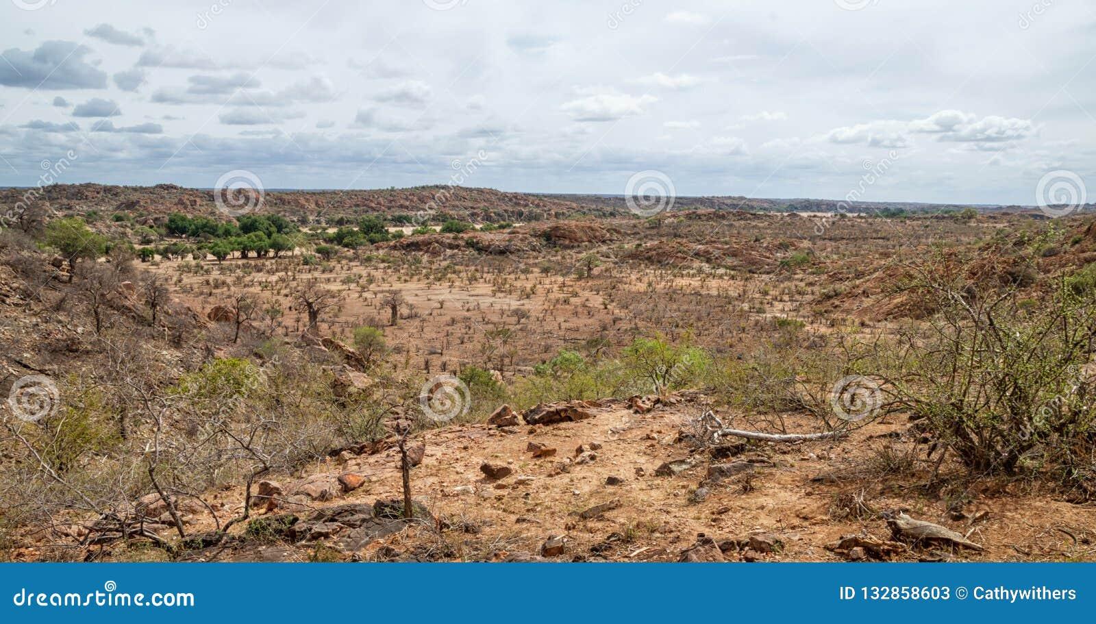 Paisaje del Limpopo