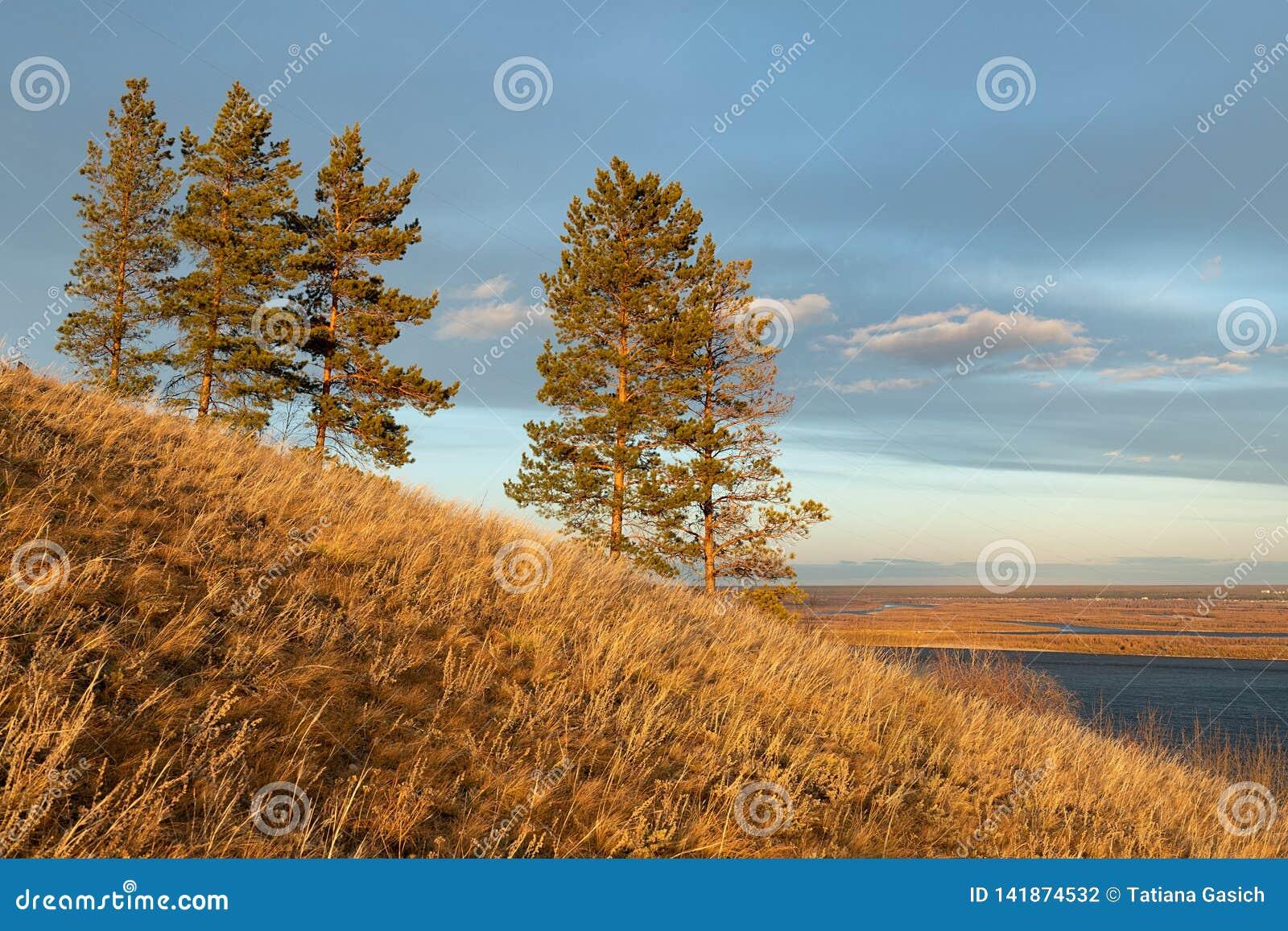 Paisaje del otoño con árboles y un río ancho