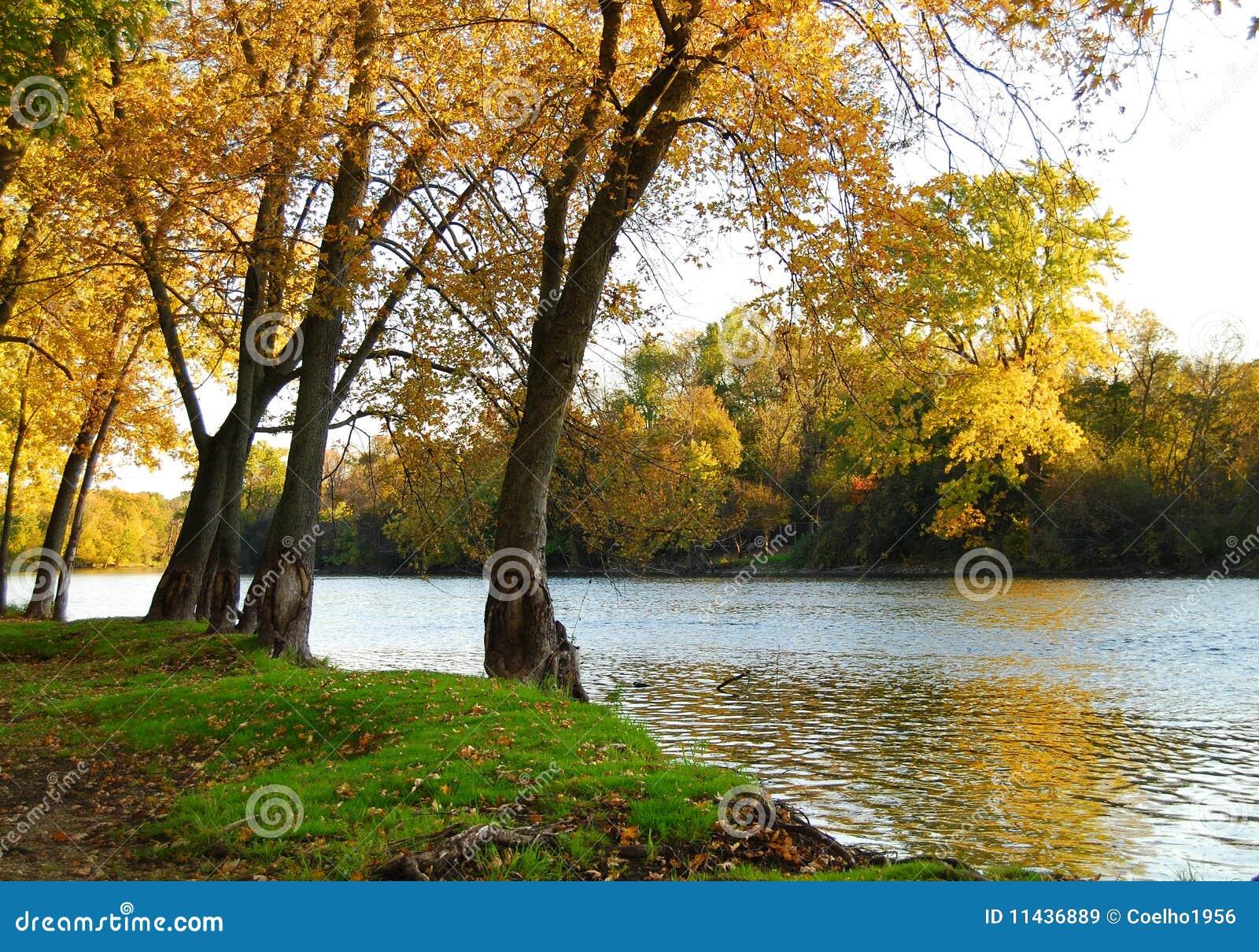 Paisaje del Riverbank del otoño