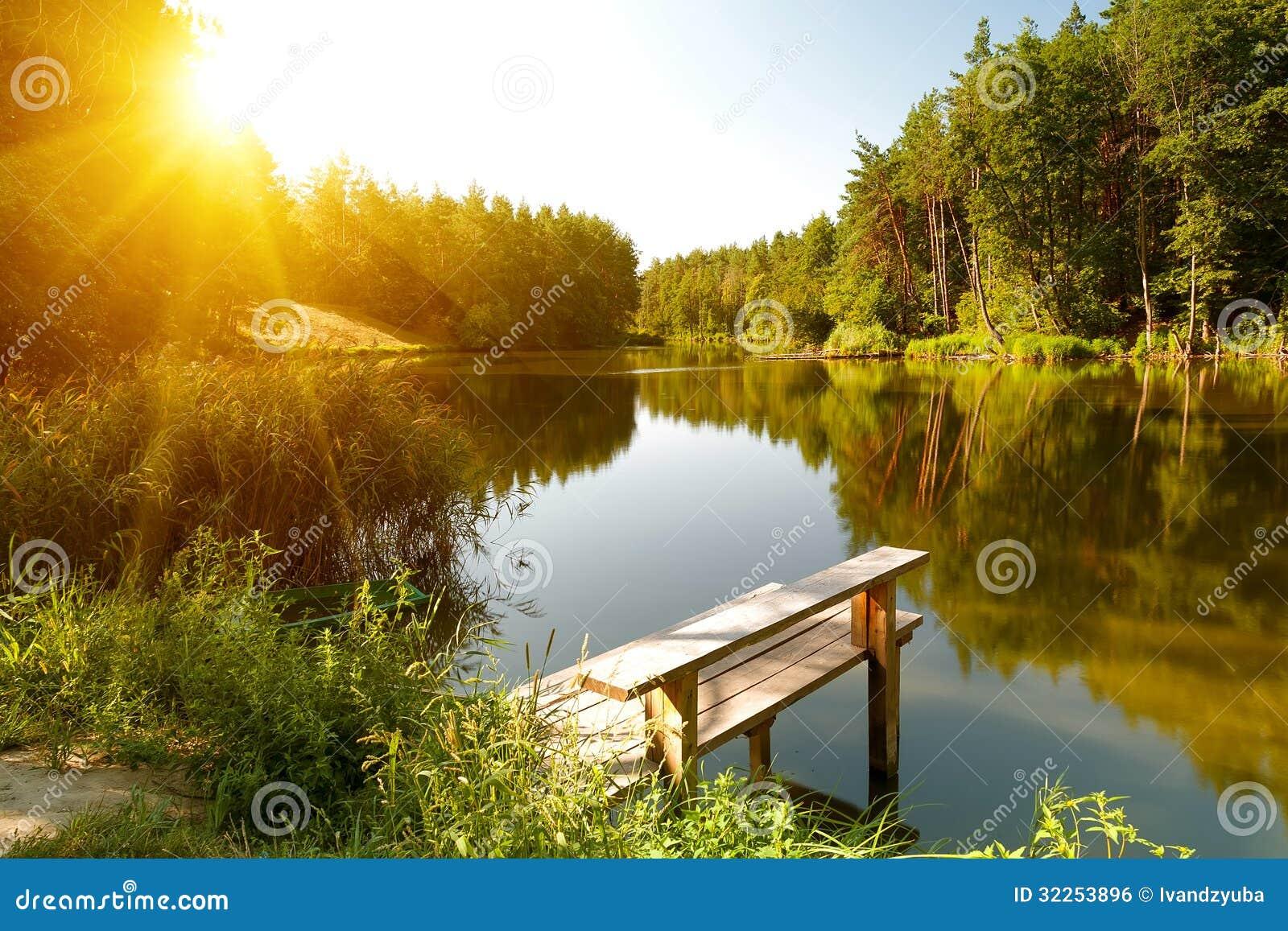 Paisaje del verano con el lago del bosque