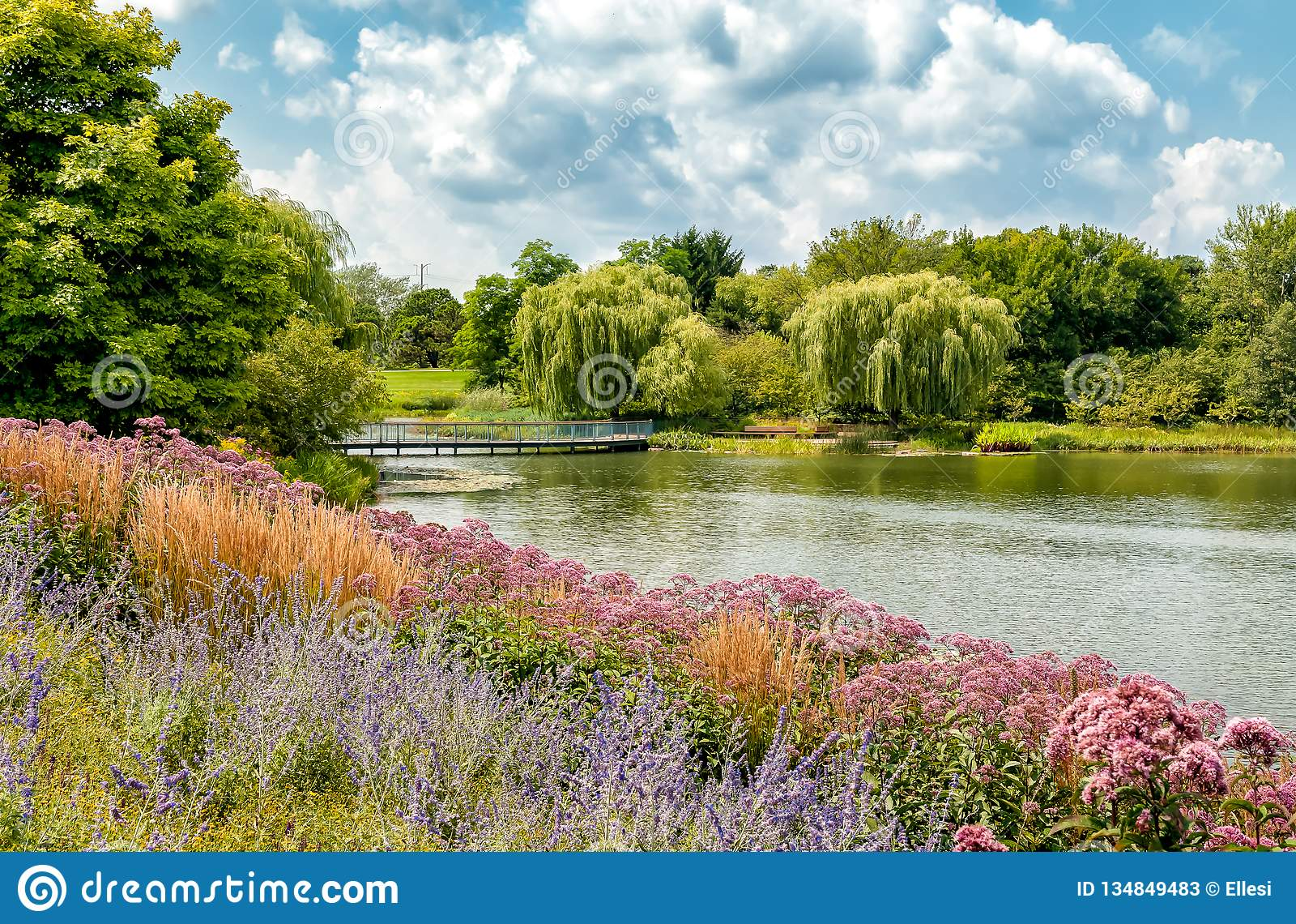 Paisaje del verano del jardín botánico de Chicago, Glencoe, los E.E.U.U.