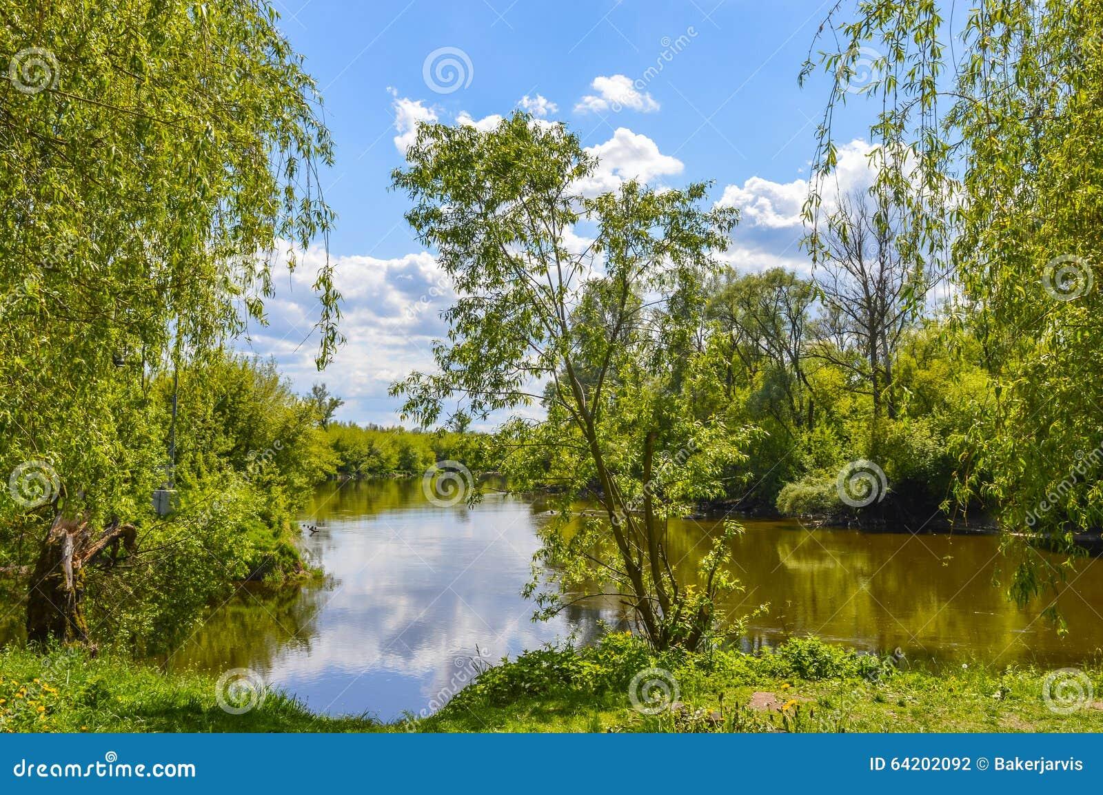 Paisaje del verano por el río Mukhavets