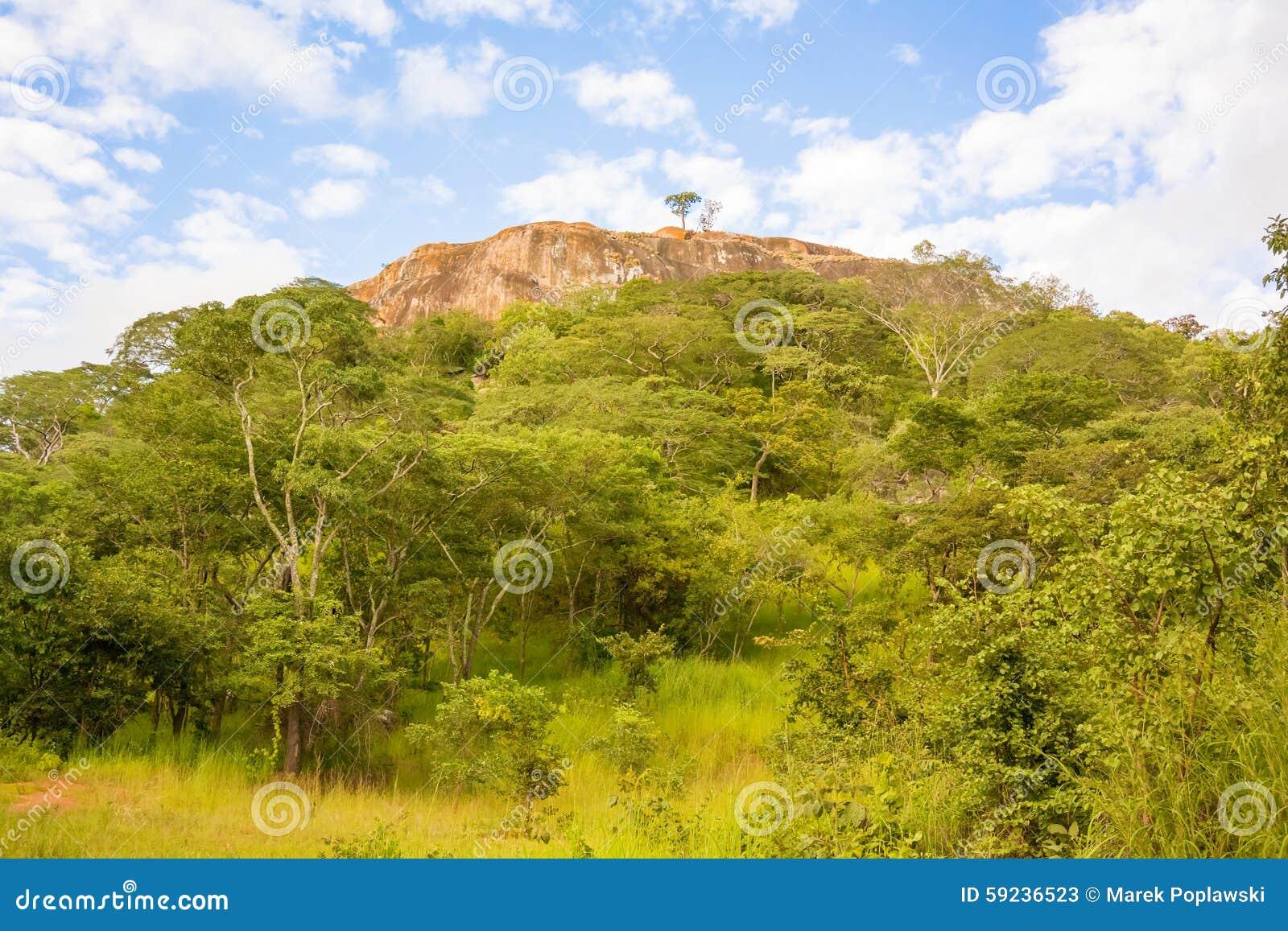 Download Paisaje en Tanzania imagen de archivo. Imagen de cubo - 59236523