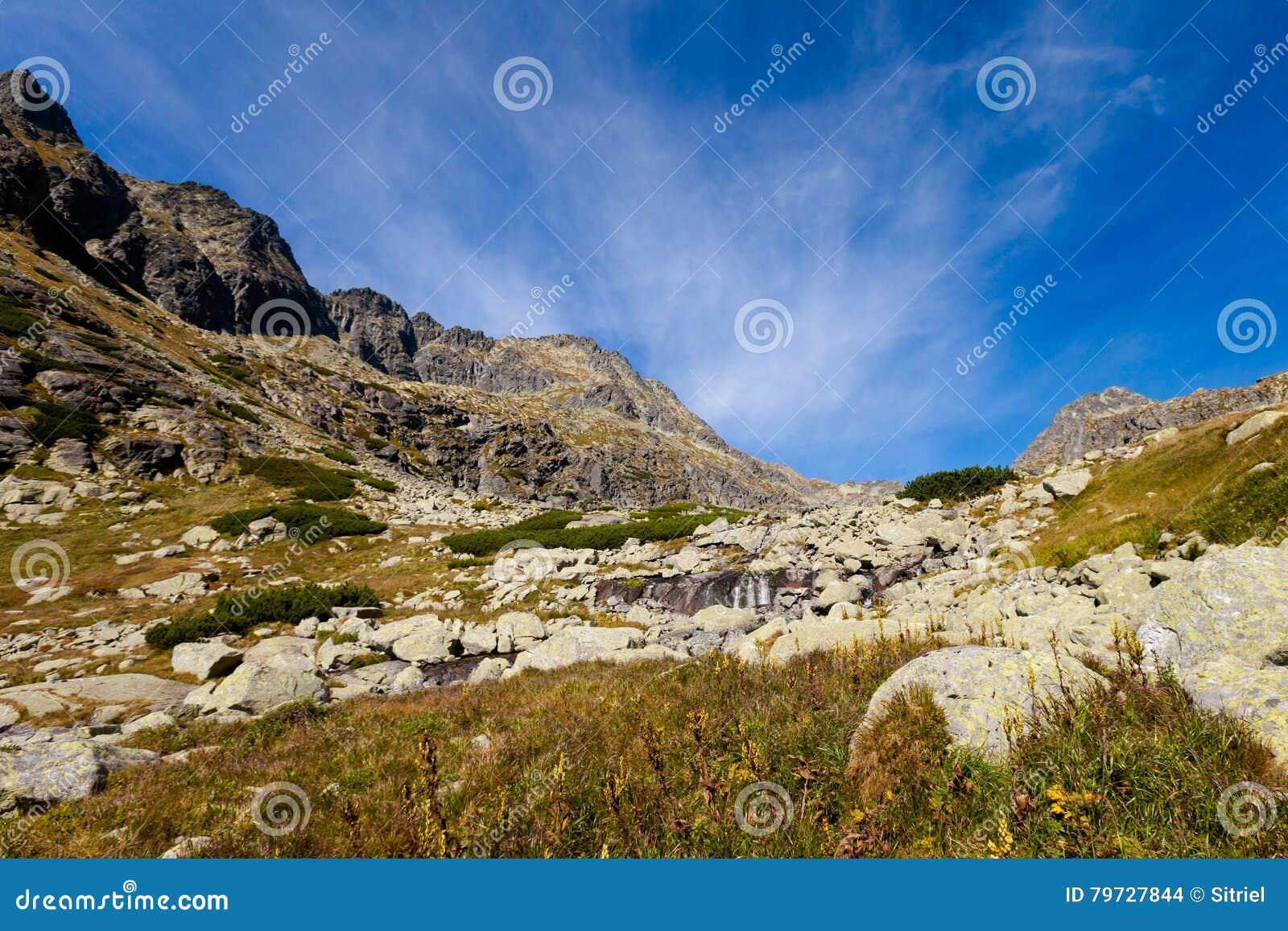 Paisaje eslovaco de Tatra del dolina de Mlynicka