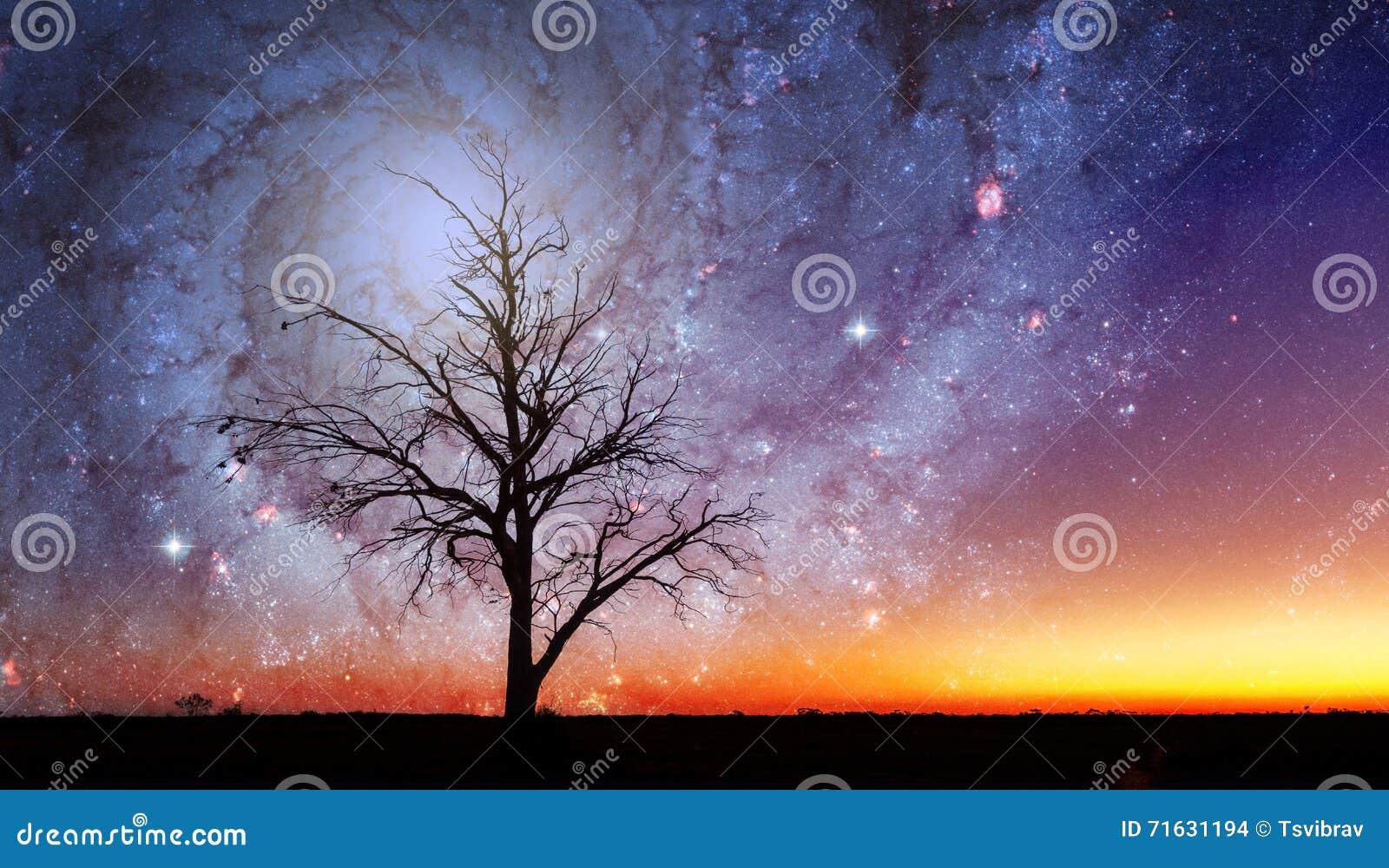 Paisaje extranjero de la fantasía con vórtice solitario del árbol y de la galaxia