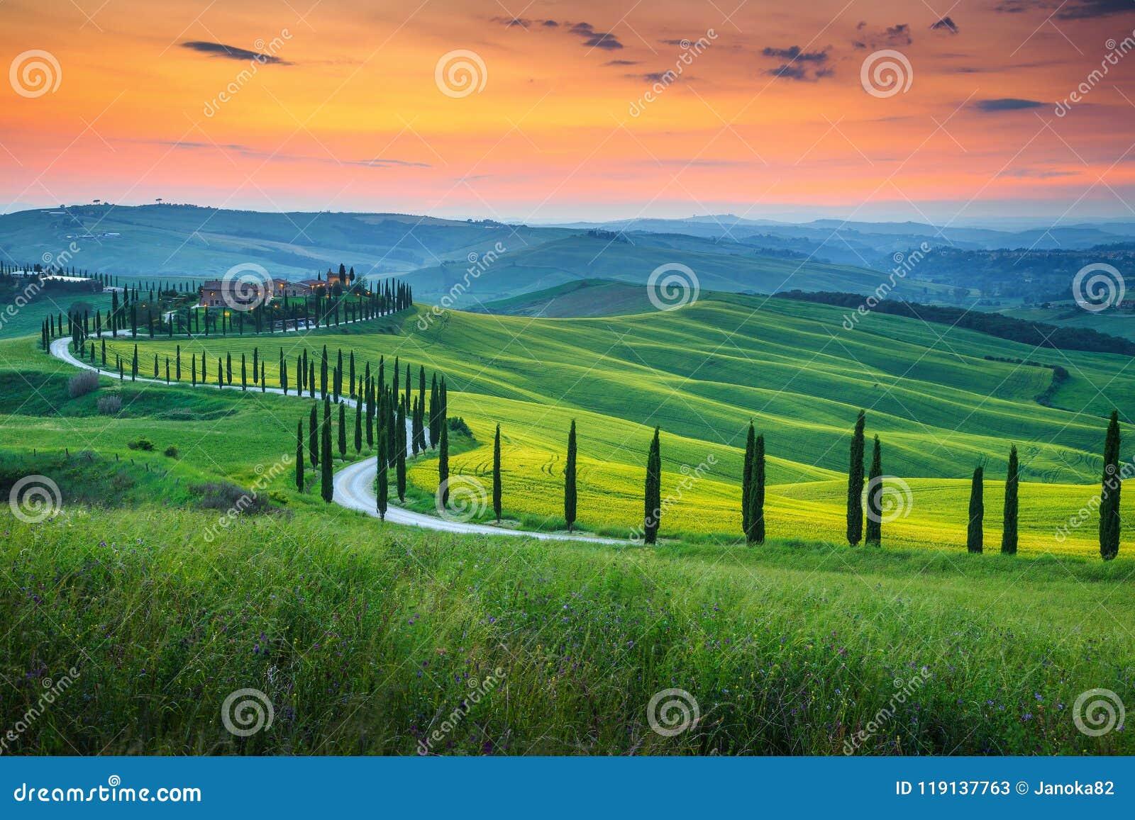 Paisaje famoso de Toscana con el camino y el ciprés curvados, Italia, Europa