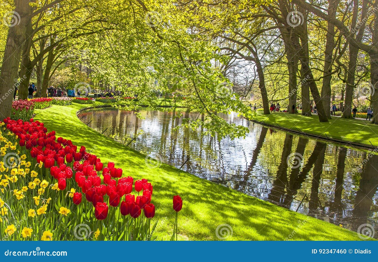 Paisaje floreciente lisse holanda de los jardines de - Jardines de holanda ...