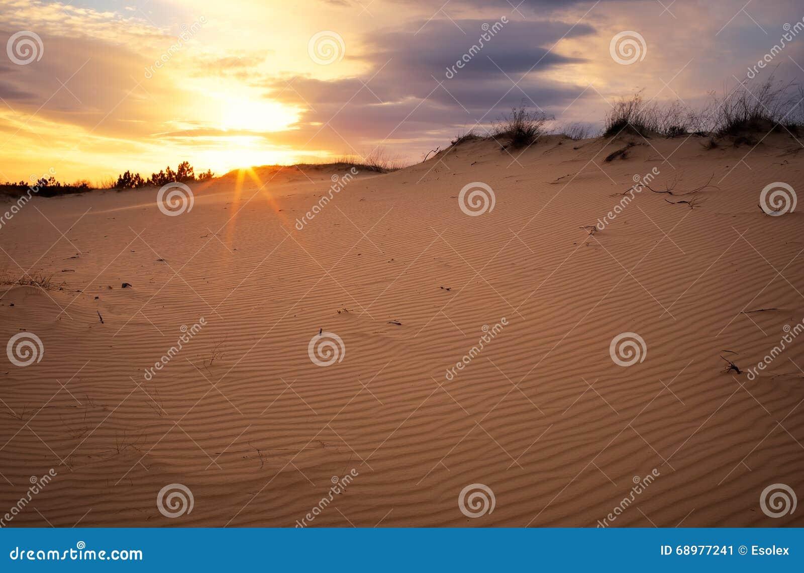 Paisaje hermoso con el cielo de la puesta del sol y la arena ondulada